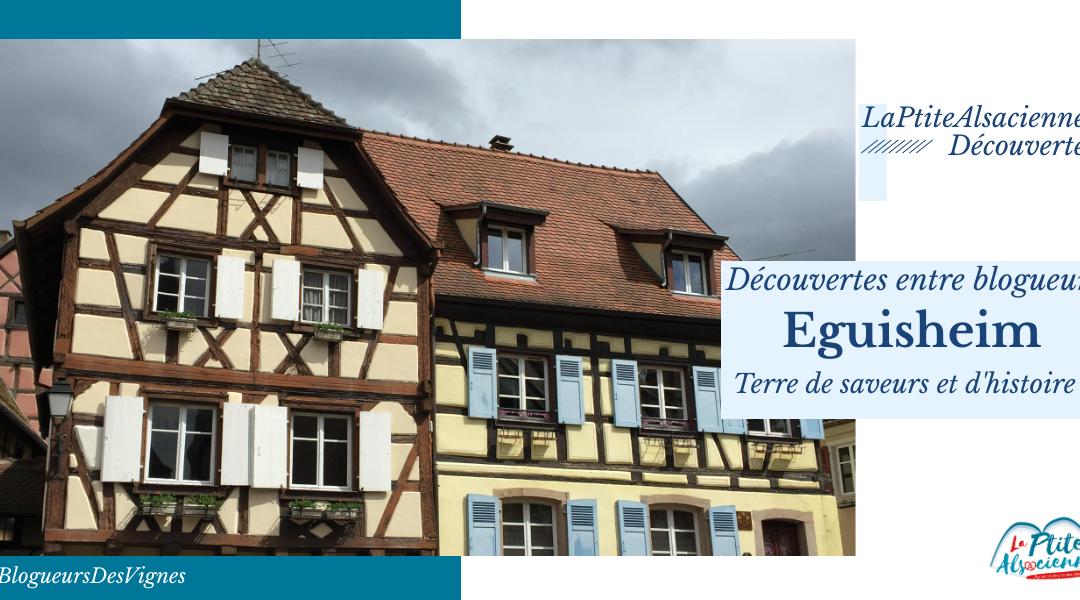 Découverte de l'œnotourisme à Eguisheim !