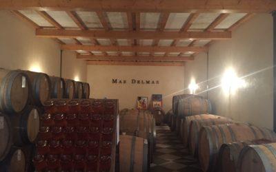 Découverte d'un vin Deméter et bio à Rivesaltes