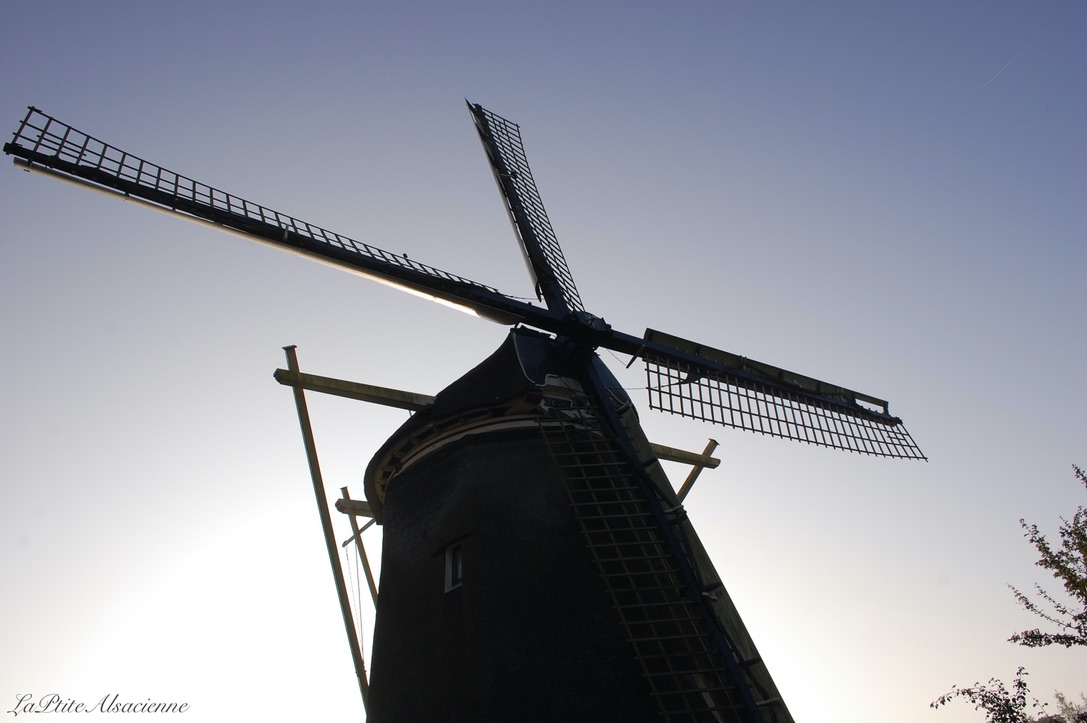 Amsterdam Le moulin - Photo by Cendrine Miesch - LaPtiteAlsacienne