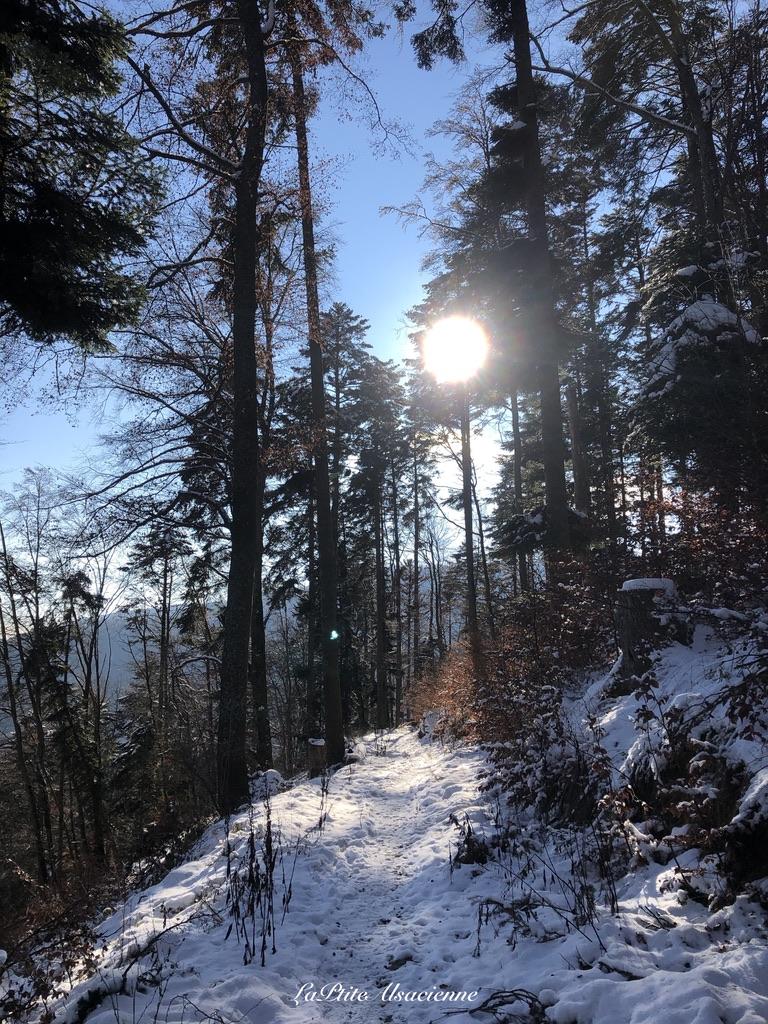 Montée vers le Judenhut depuis le Col de Wolfsgrube - Photo by Cendrine Miesch dite LaPtiteAlsacienne