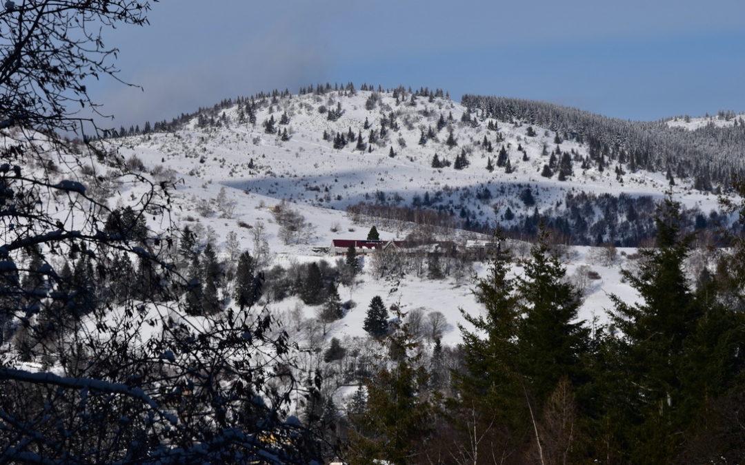Vallée de Murbach sous la neige - Randonner en solo - Photo janvier 2021 - Cendrine Miesch Dite LaPtiteAlsacienne
