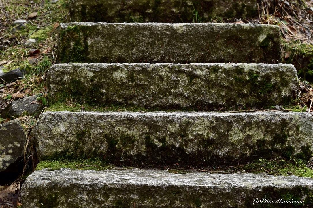 Escalier qui monte au Lac du Ballon depuis la cascade du Seebach - Photo de Cendrine Miesch dite LaPtiteAlsacienne