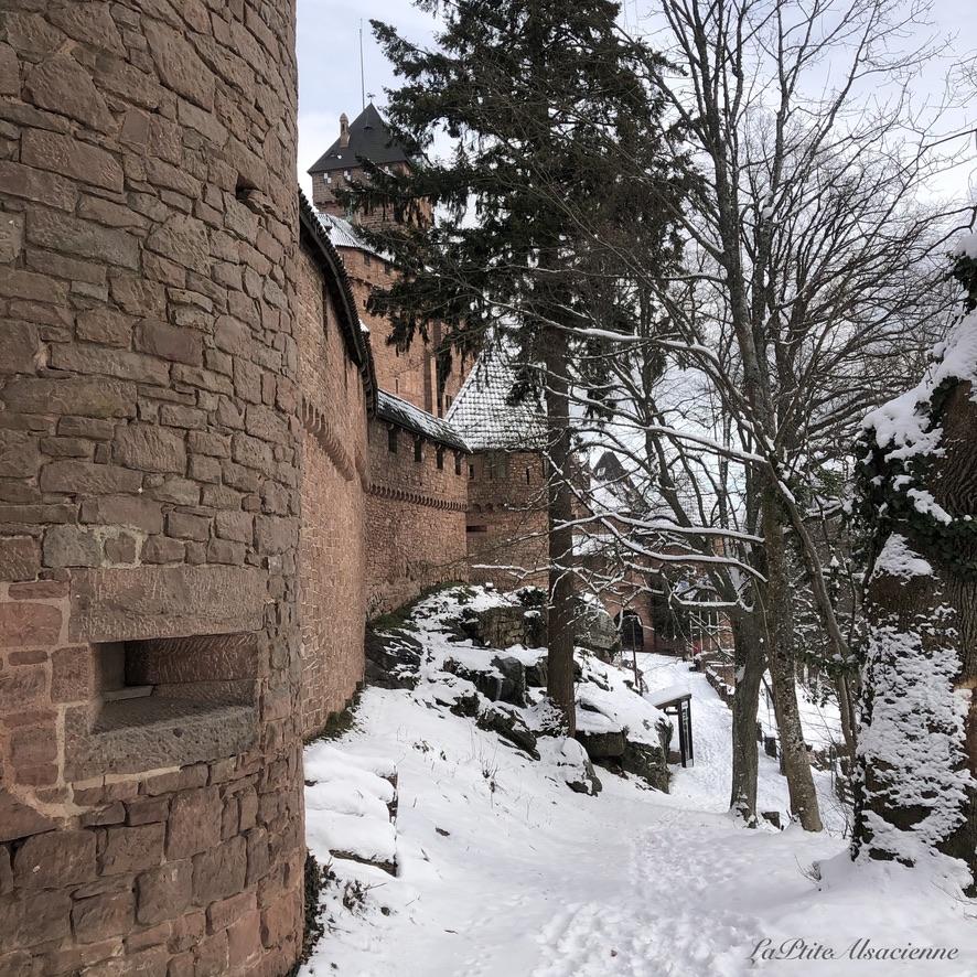Autour du château du Haut-Koenigsbourg, en Alsace, Photo par LaPtiteAlsacienne Cendrine Miesch