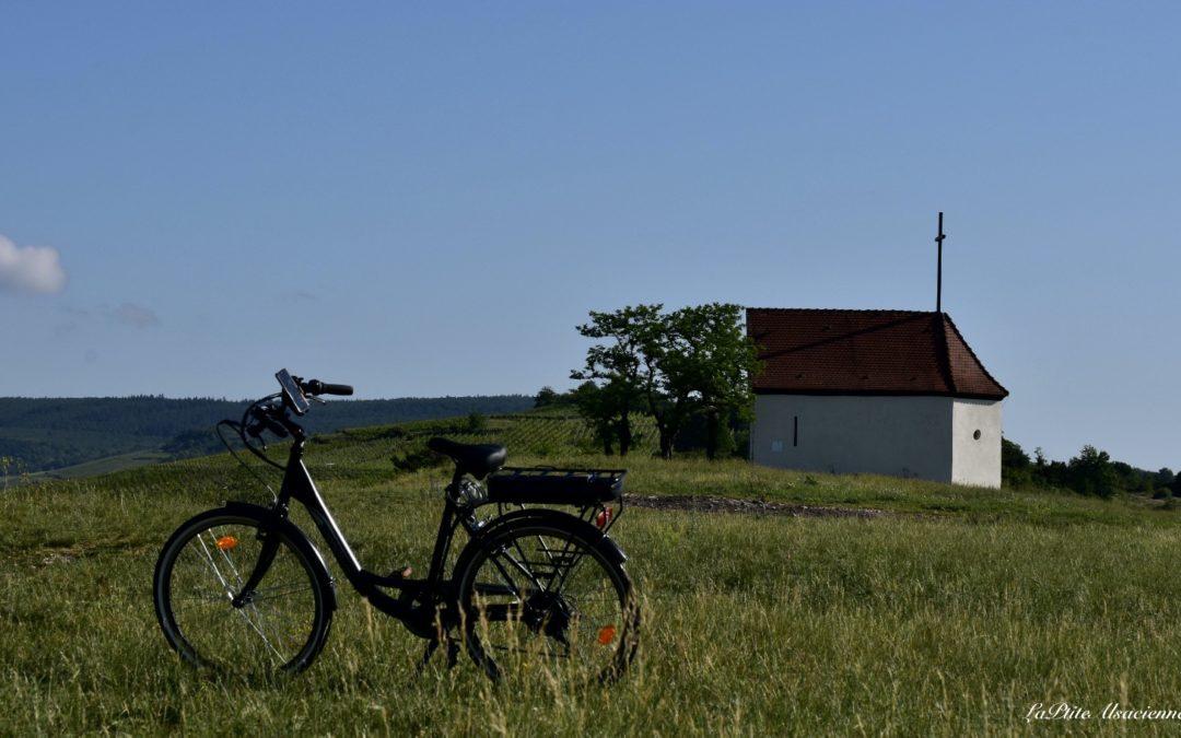 Balade en vélo électrique dans le vignoble alsacien