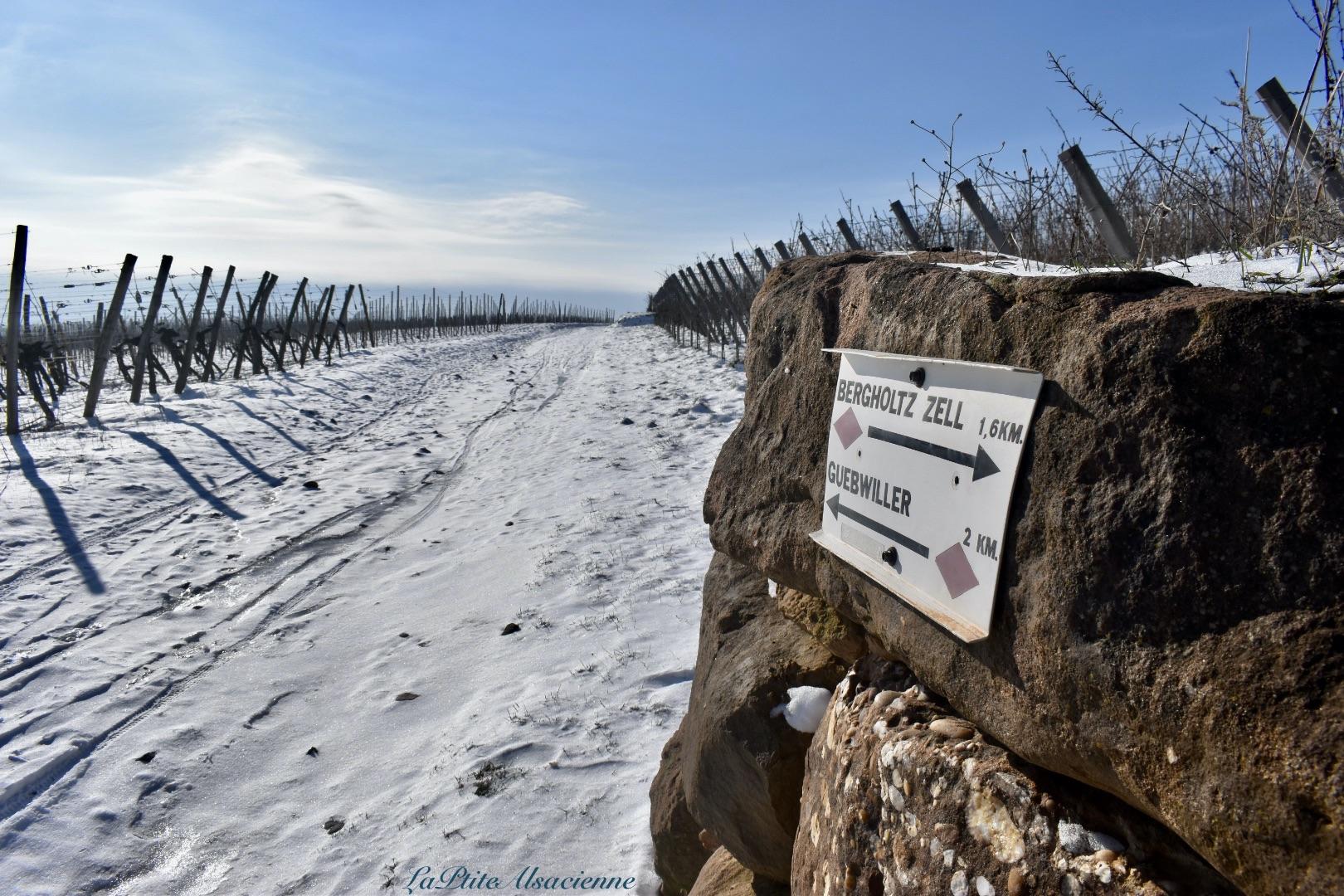 Panneau signalétique dans les vignes - Photo by Cendrine Miesch dite LaPtiteAlsacienne