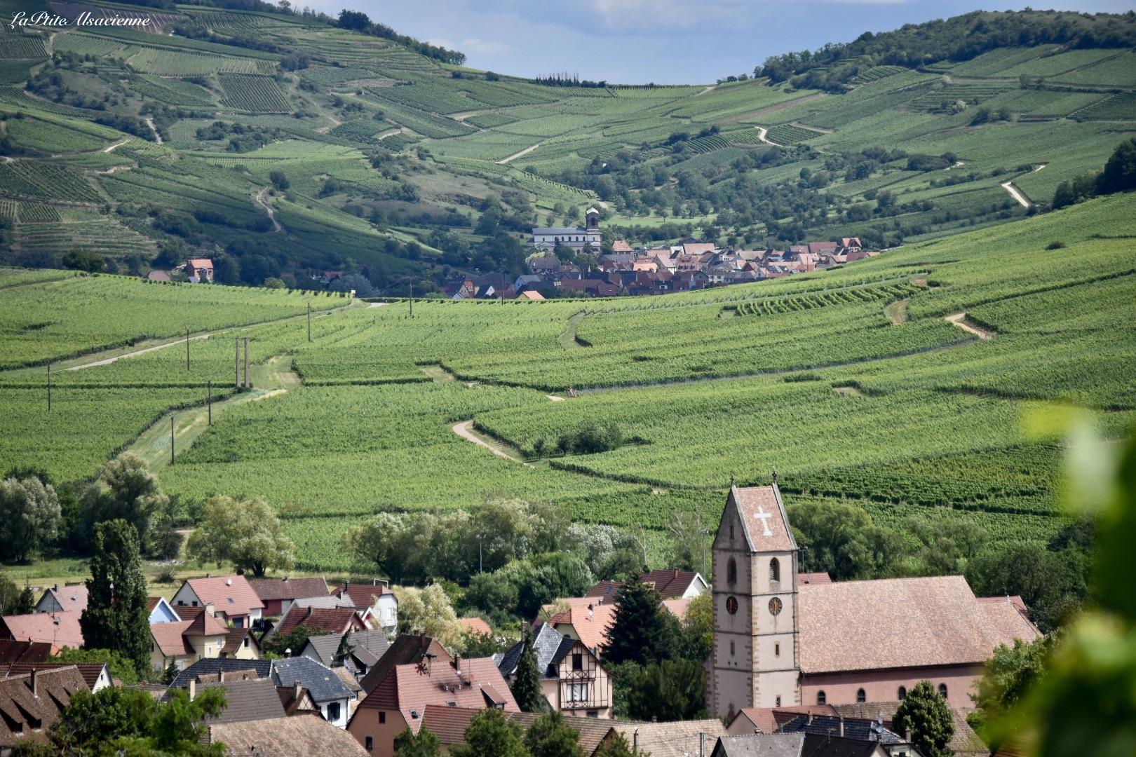 Depuis le vignoble, vue sur Orschwihr et Westhalten, 2 villages réputés pour leurs vins d'Alsace - Cendrine Miesch dite LaPtiteAlsacienne
