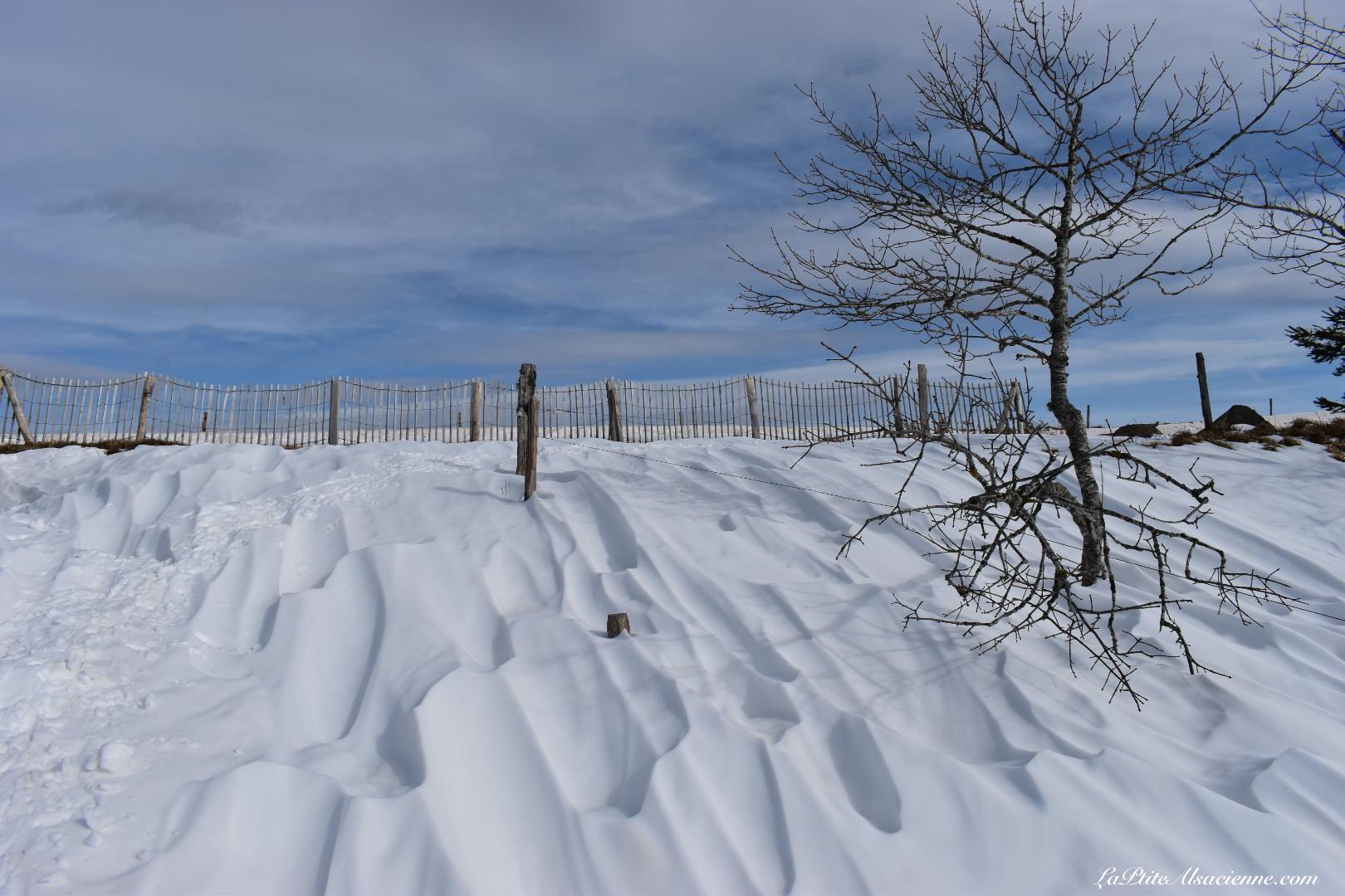 Le vent donne des formes à la neige - Randonnée du 16 février 2021 vers le Grand Ballon - Cendrine Miesch dite LaPtiteAlsacienne