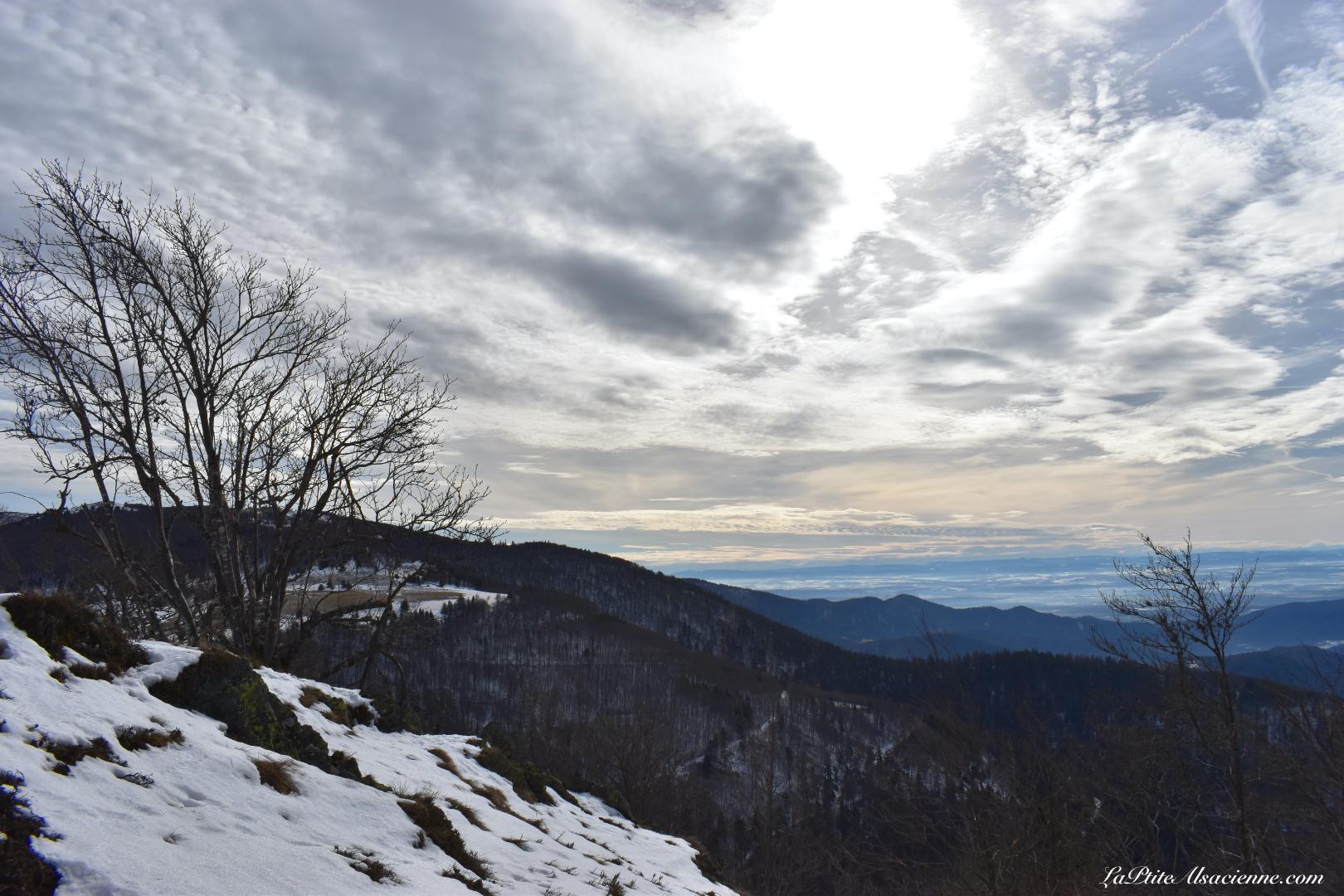 plaine d'Alsace, Forêt Noire et Alpes sur une même photo - Randonnée du 16 février 2021 par Cendrine Miesch dite LaPtiteAlsacienne