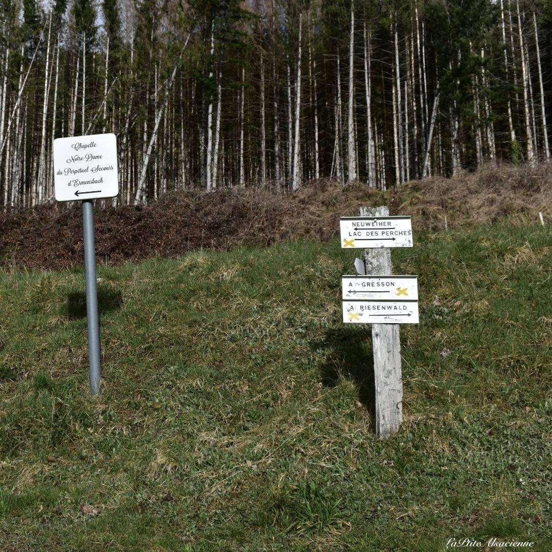 Panneaux directionnel départ randonnée lac des perches Rimbach-Près-Masevaux