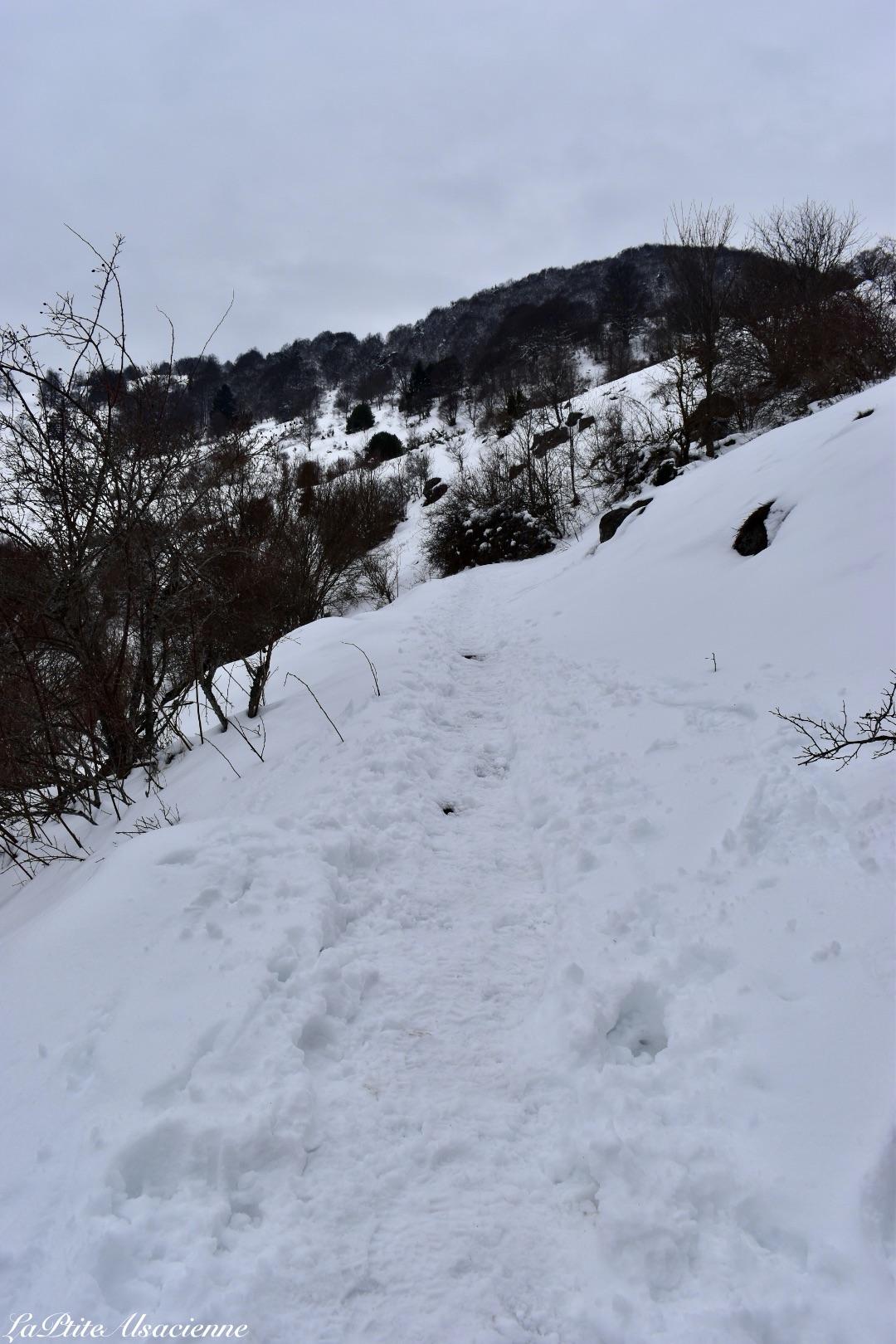 04 sentier sous la neige montee vers le petit ballon