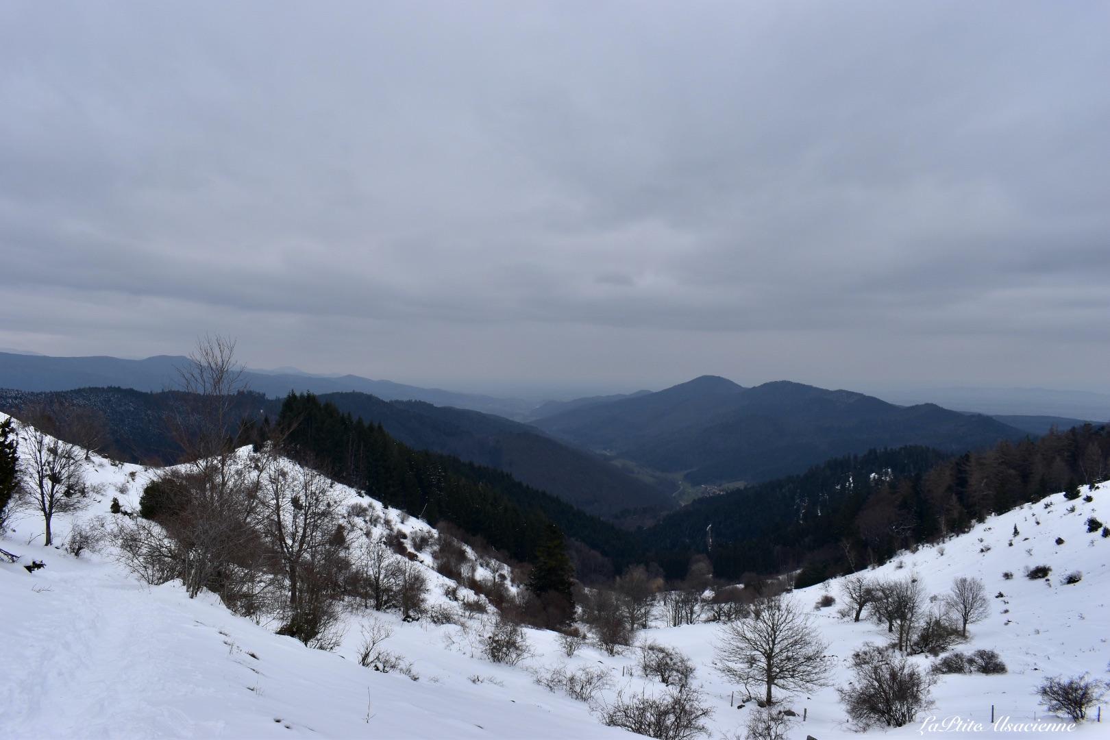 Vue sur la ligne bleue des Vosges