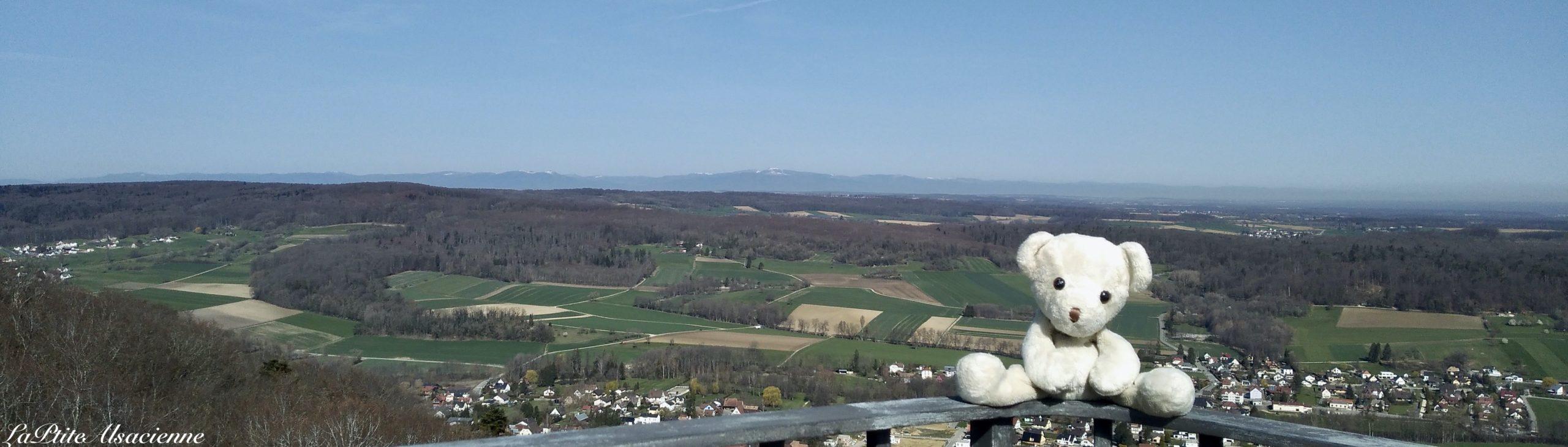 Doudou Sans Nom se balade aux ruines du Château de Landskron à Leymen en Alsace