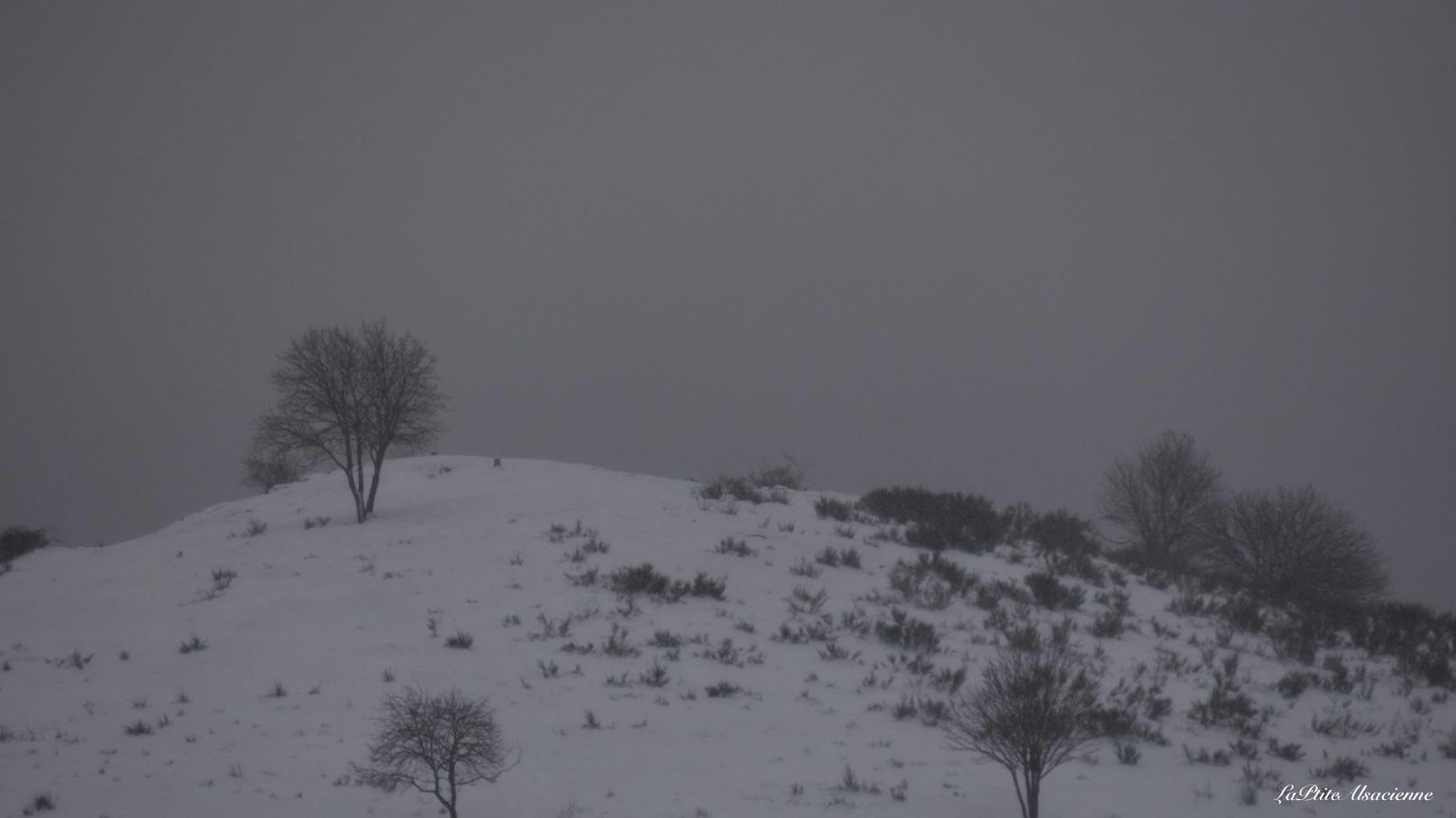 Ebeneck sous neige