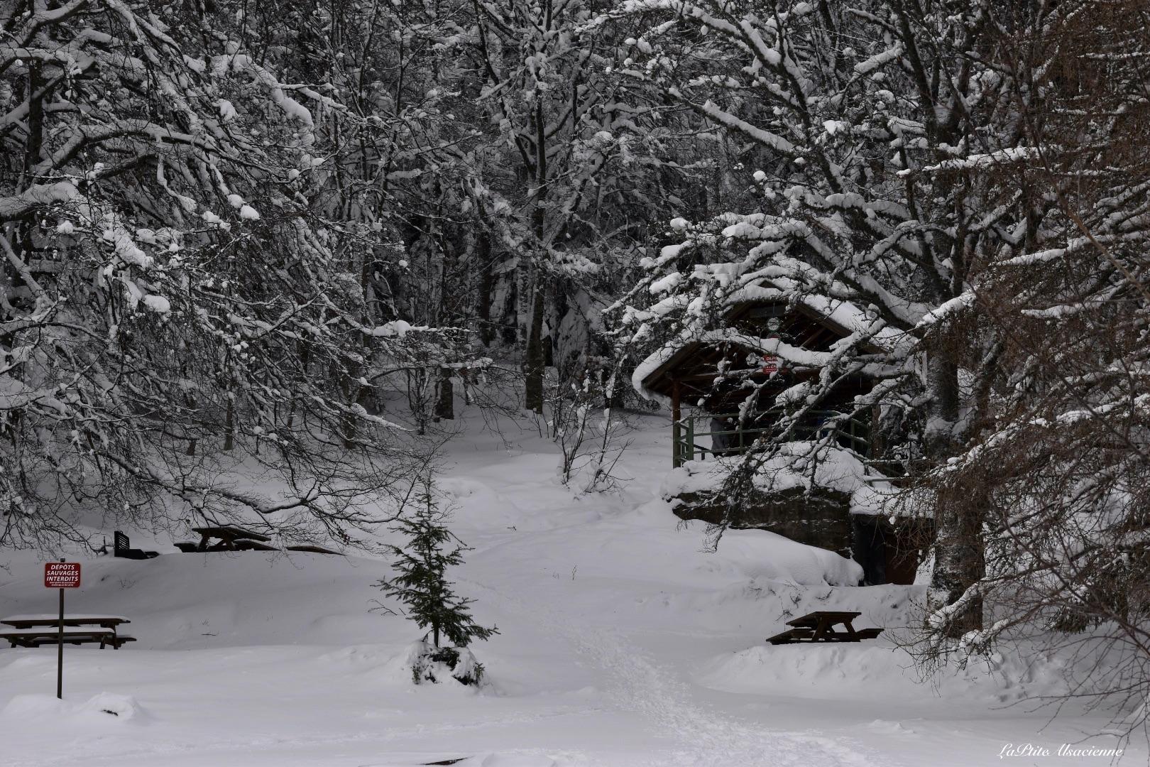 Judenhut Refuge et espace pique nique sous la neige
