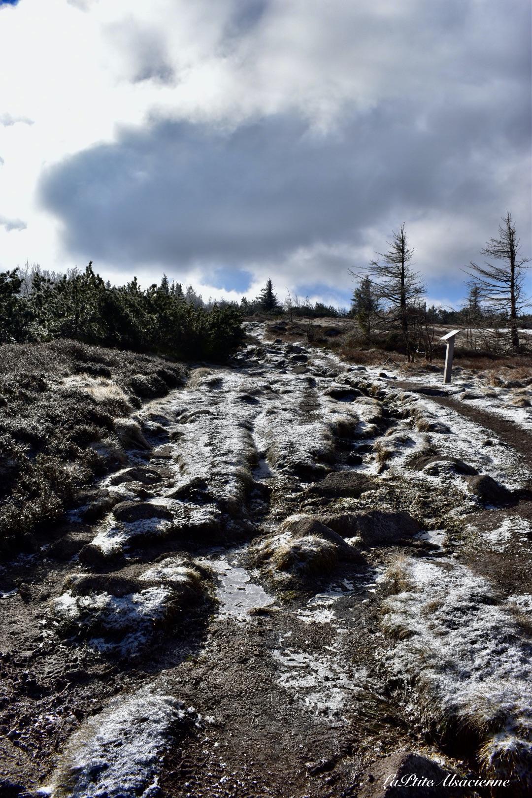 Chemin du GR5 au-dessus du Lac Blanc en direction du Gazon du Faing Les Hautes Chaumes