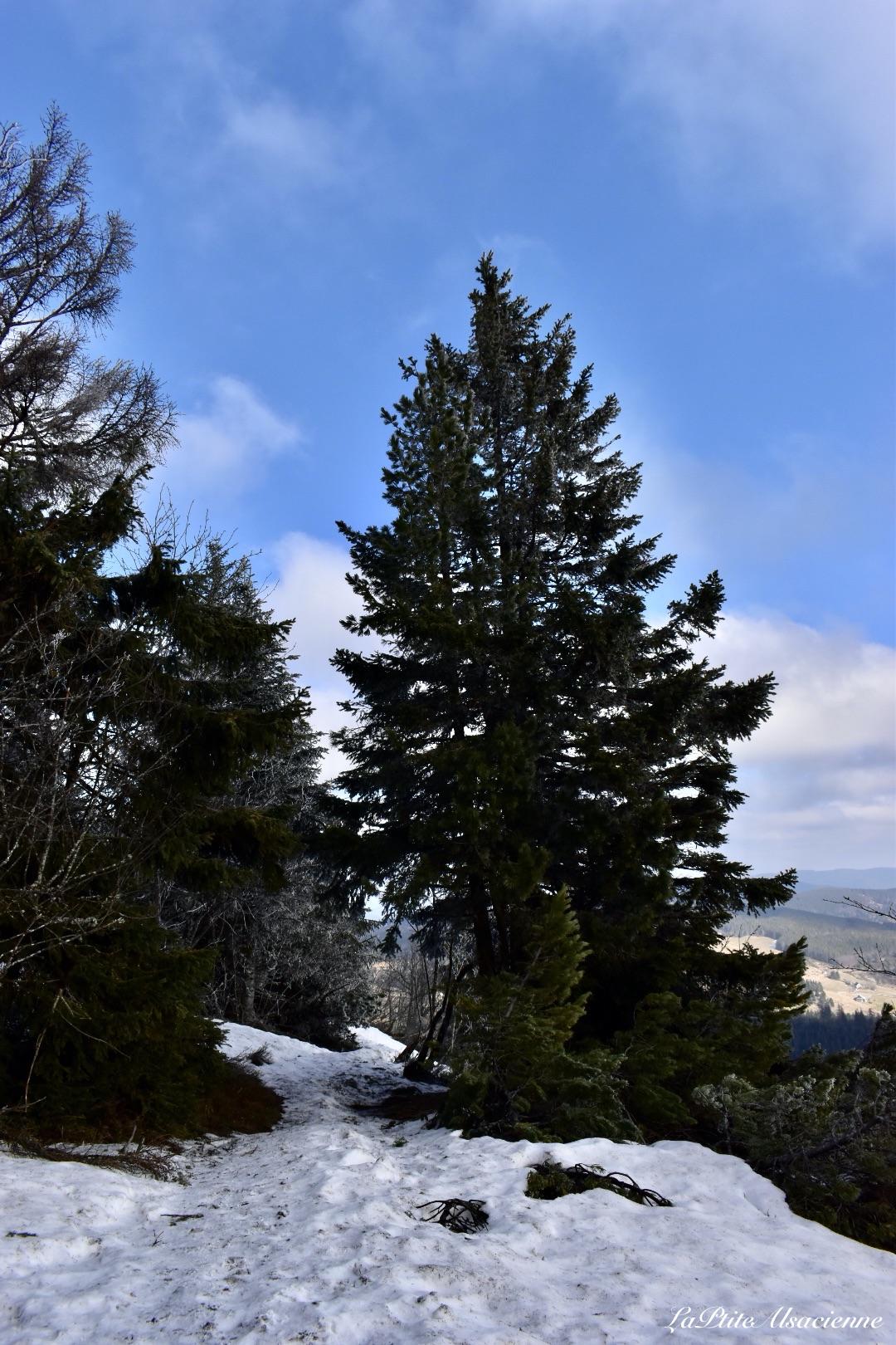 Lac Blanc, sentier direction le Rocher Hans.