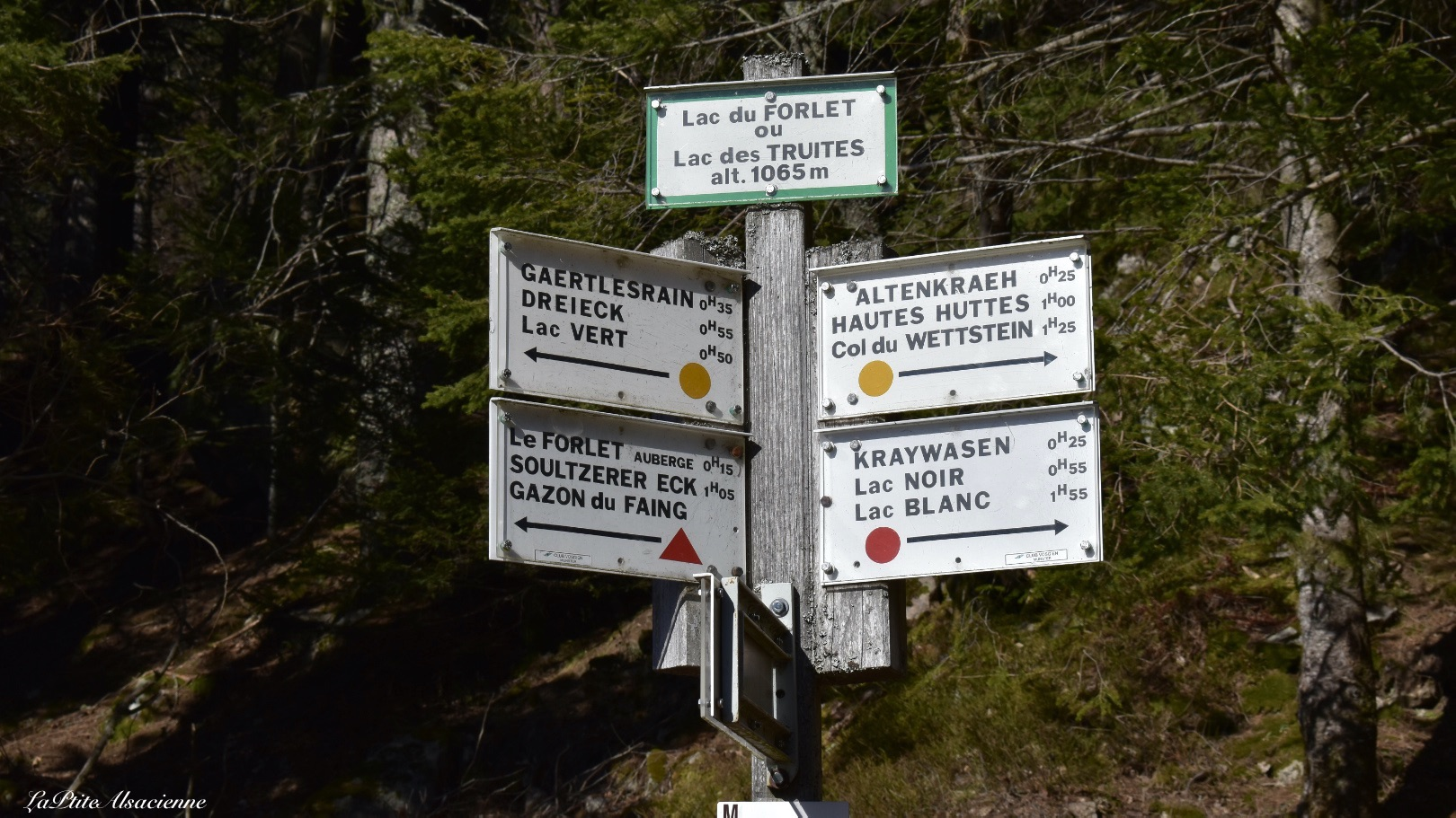 Panneau directionnel du Club Vosgien au Lac du Forlet