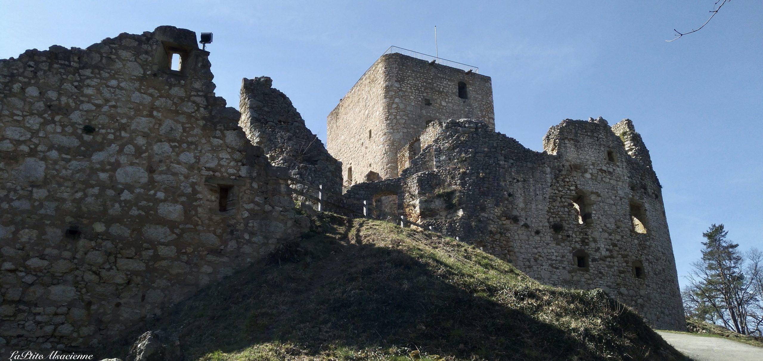 Ruines du Château de Landskron à Leymen