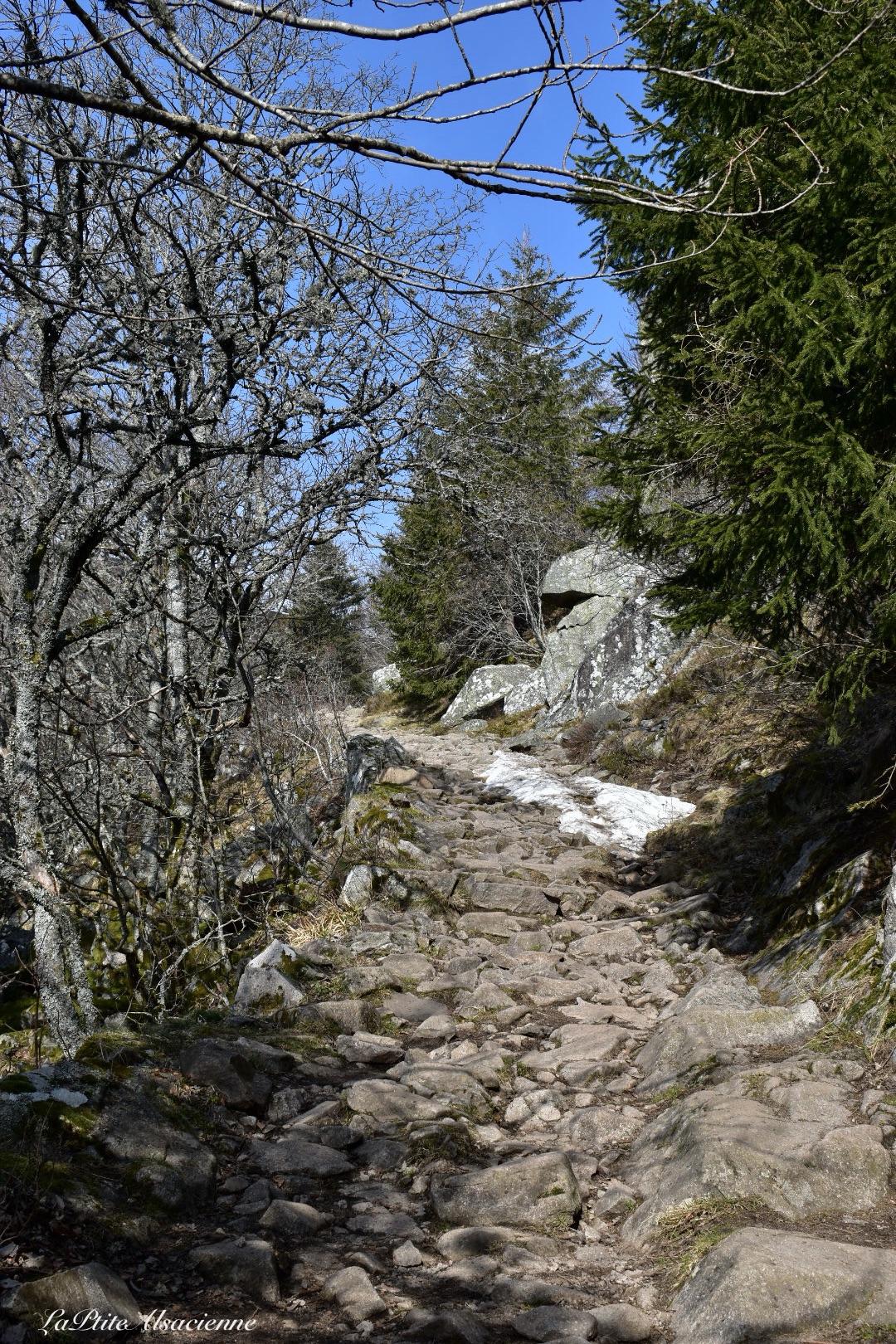 sentier direction Le Petit Hohneck, le Hohneck et le col du Schaefertal - Photo by Cendrine Miesch dite LaPtiteAlsacienne