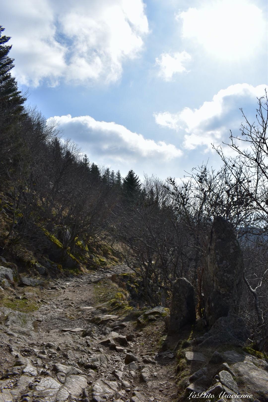 Sentier qui descend ver le lac du Schiessrothried, avant le Schiessroth