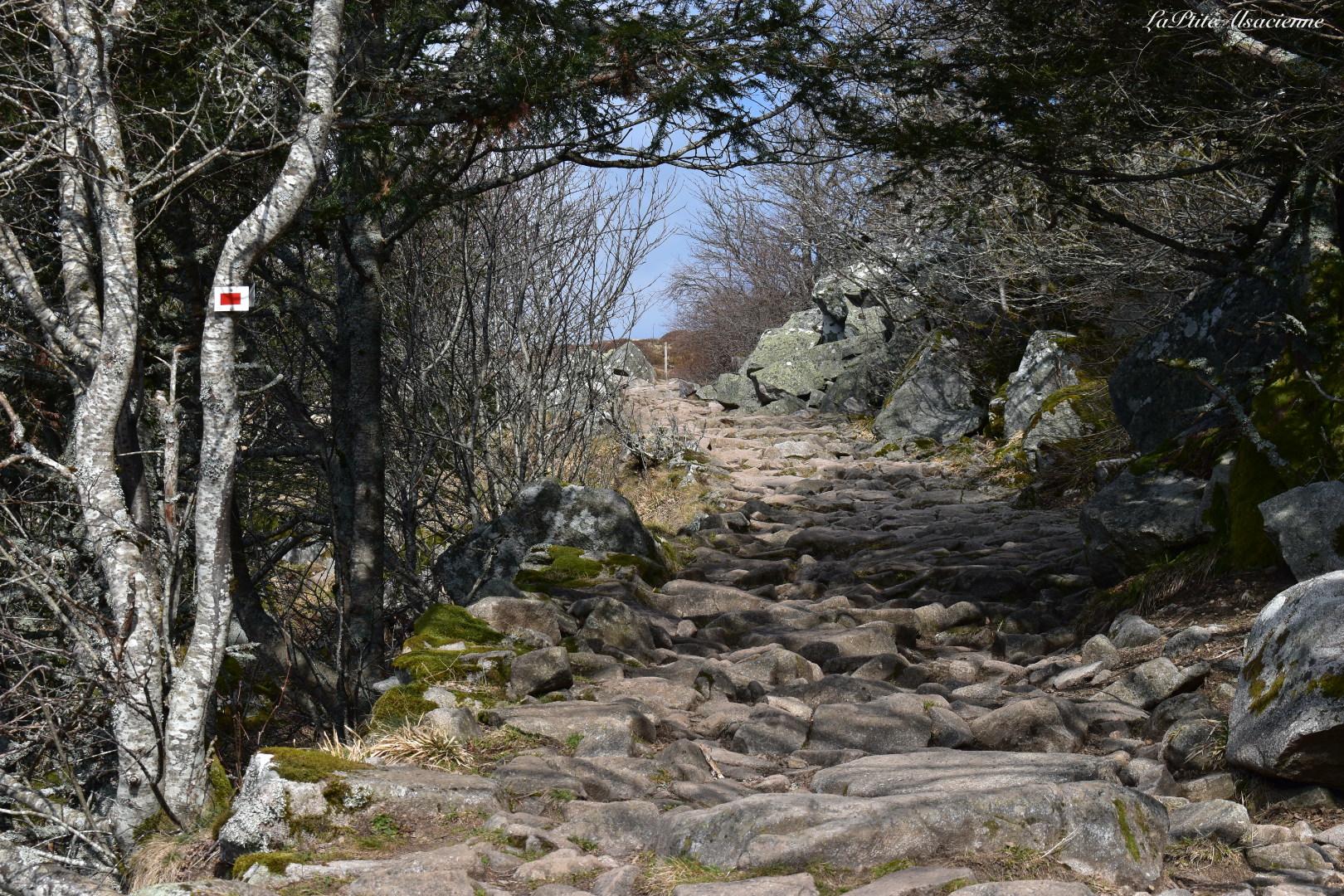 Sentier constitué de roches en direction du col du Schaeferthal pour le Hohneck - Photo de Cendrine Miesch dite LaPtiteAlsacienne