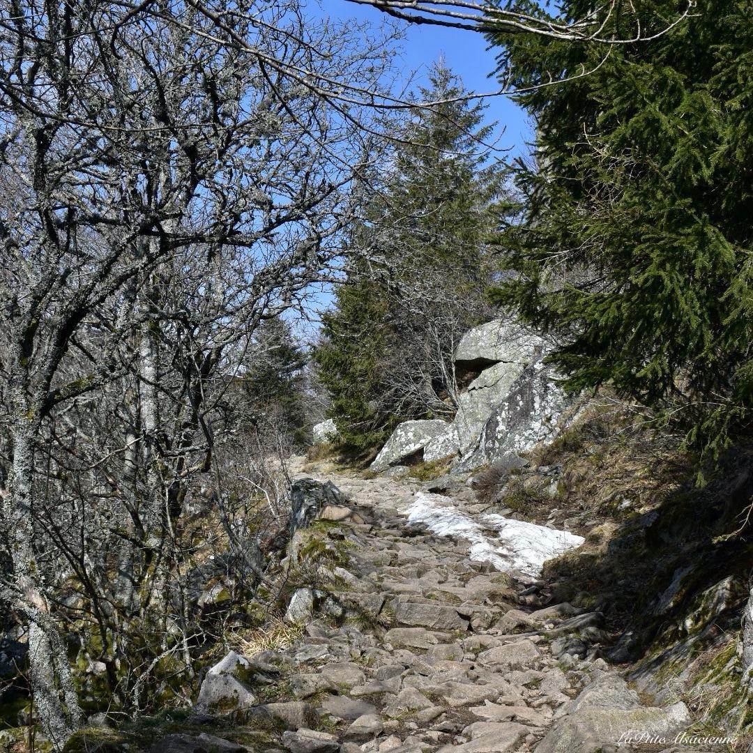 Sentier menant au Hohneck par le col du Schaeferthal
