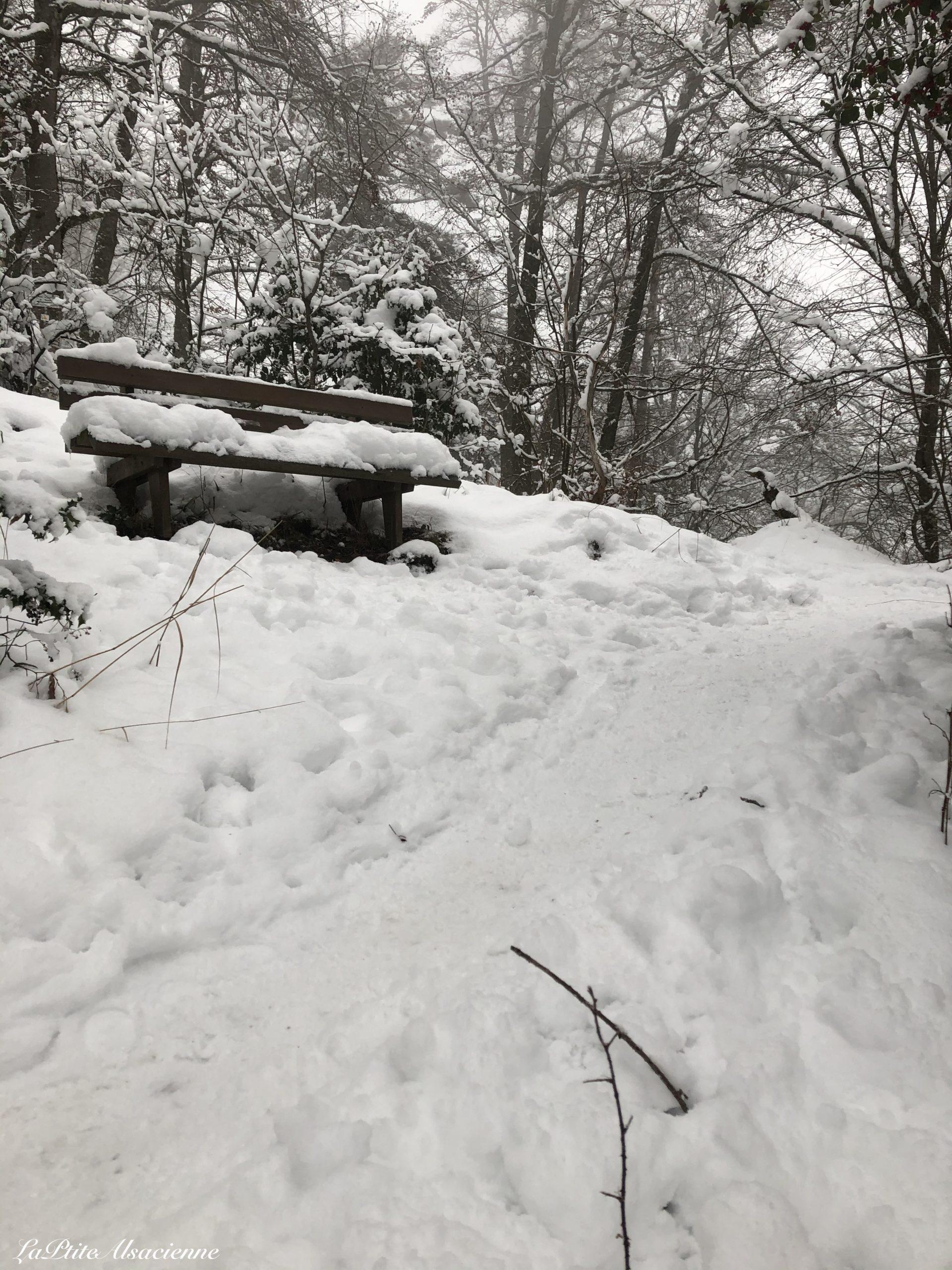 banc avant ruine du hohrupf