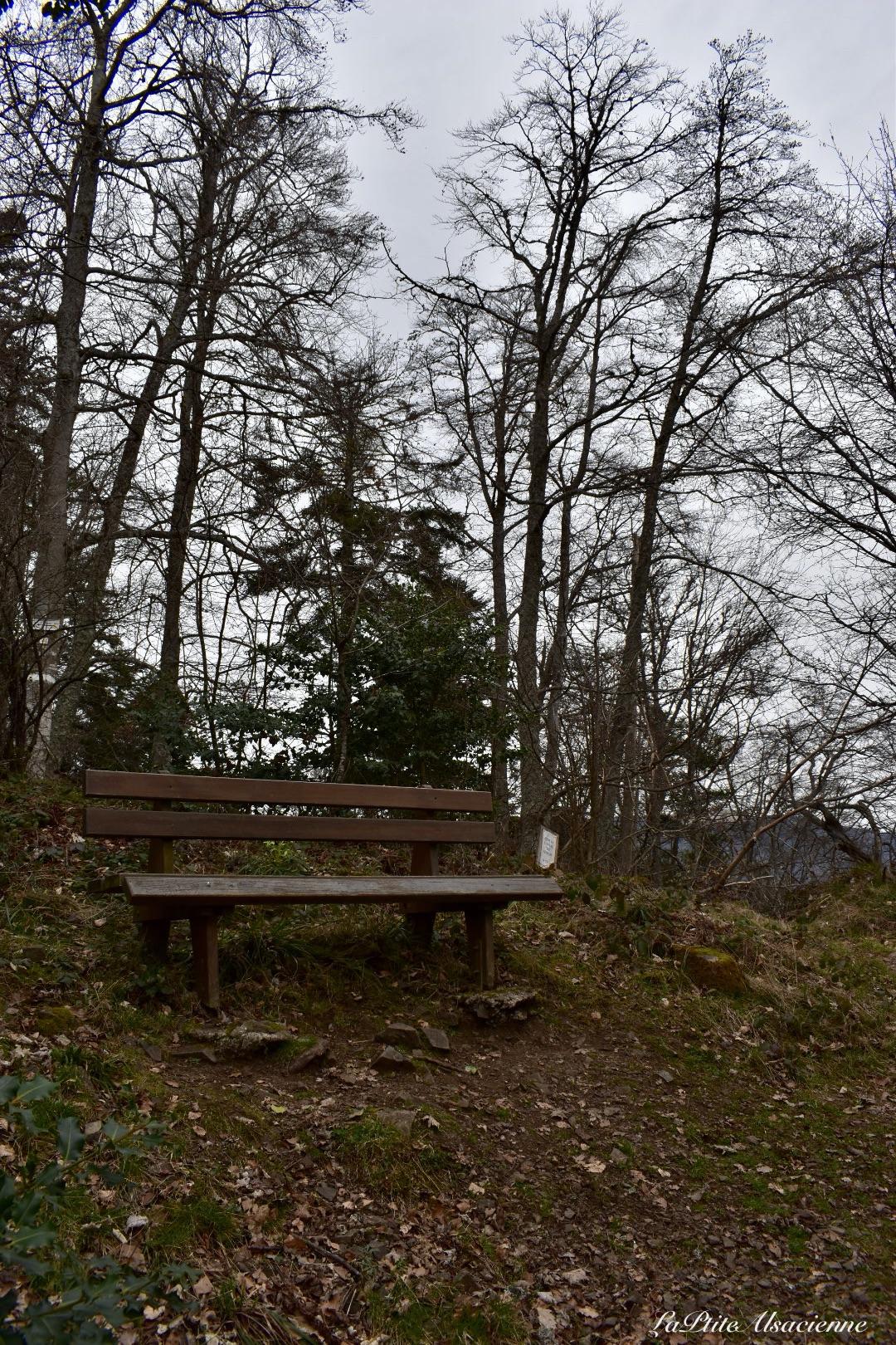 banc avant ruine hohrupf