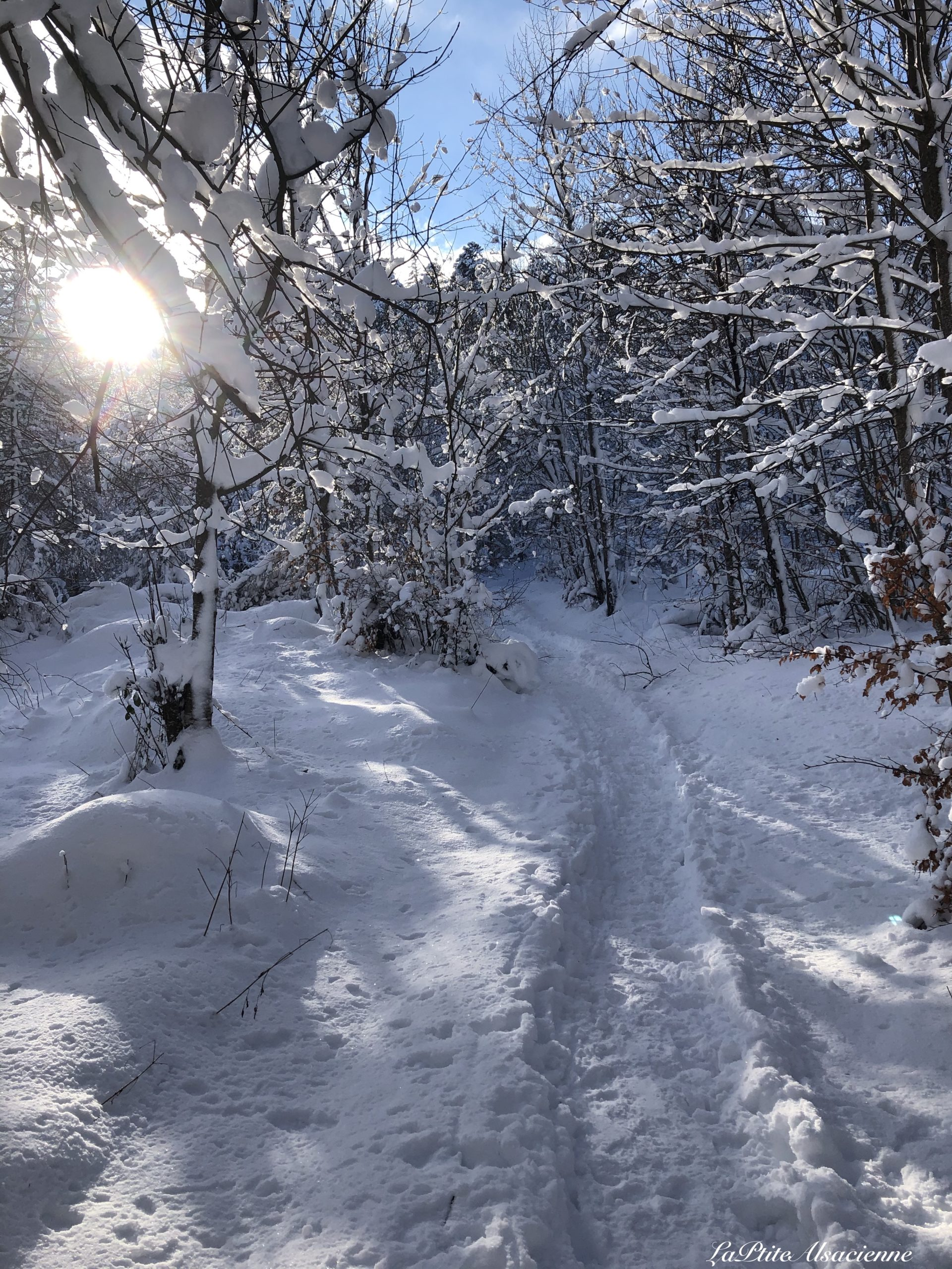 chemin vers le lieserwasen sous la neige