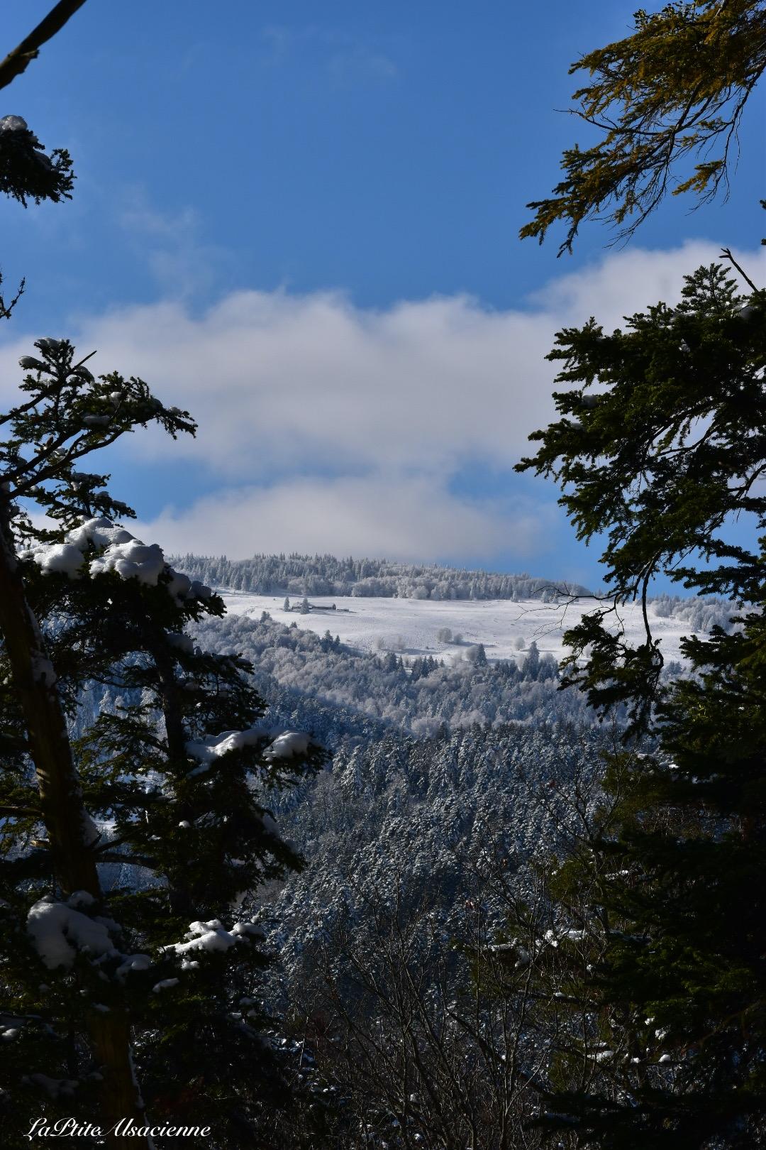 ciel bleu montagne neige murbach janvier 2021