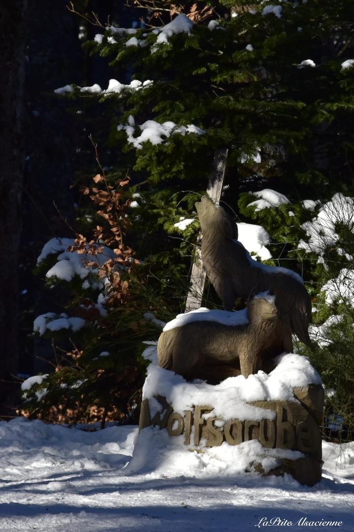col du wolfsgrube sous la neige janvier 2021