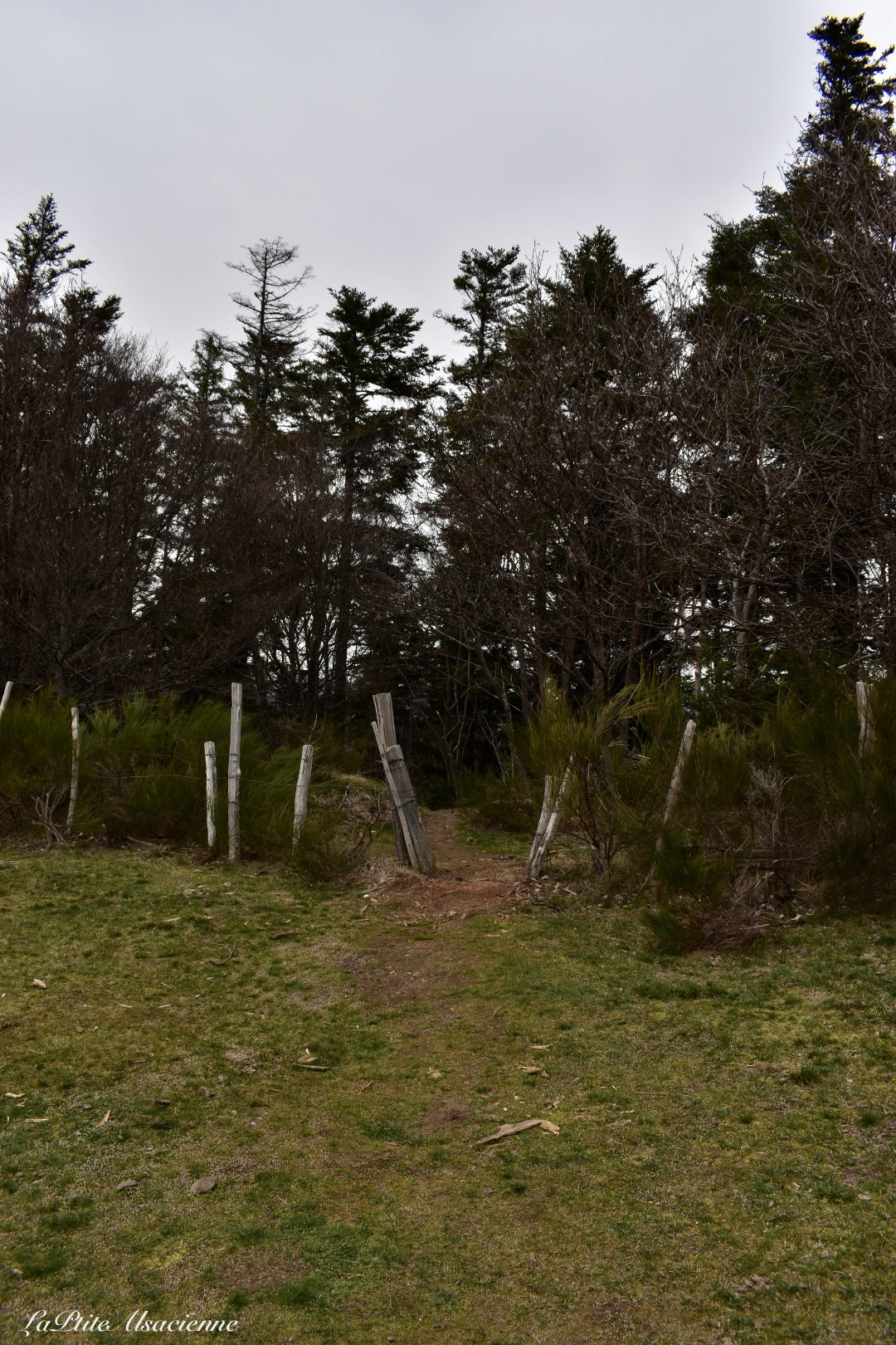repartir de l ebeneck via se sentier