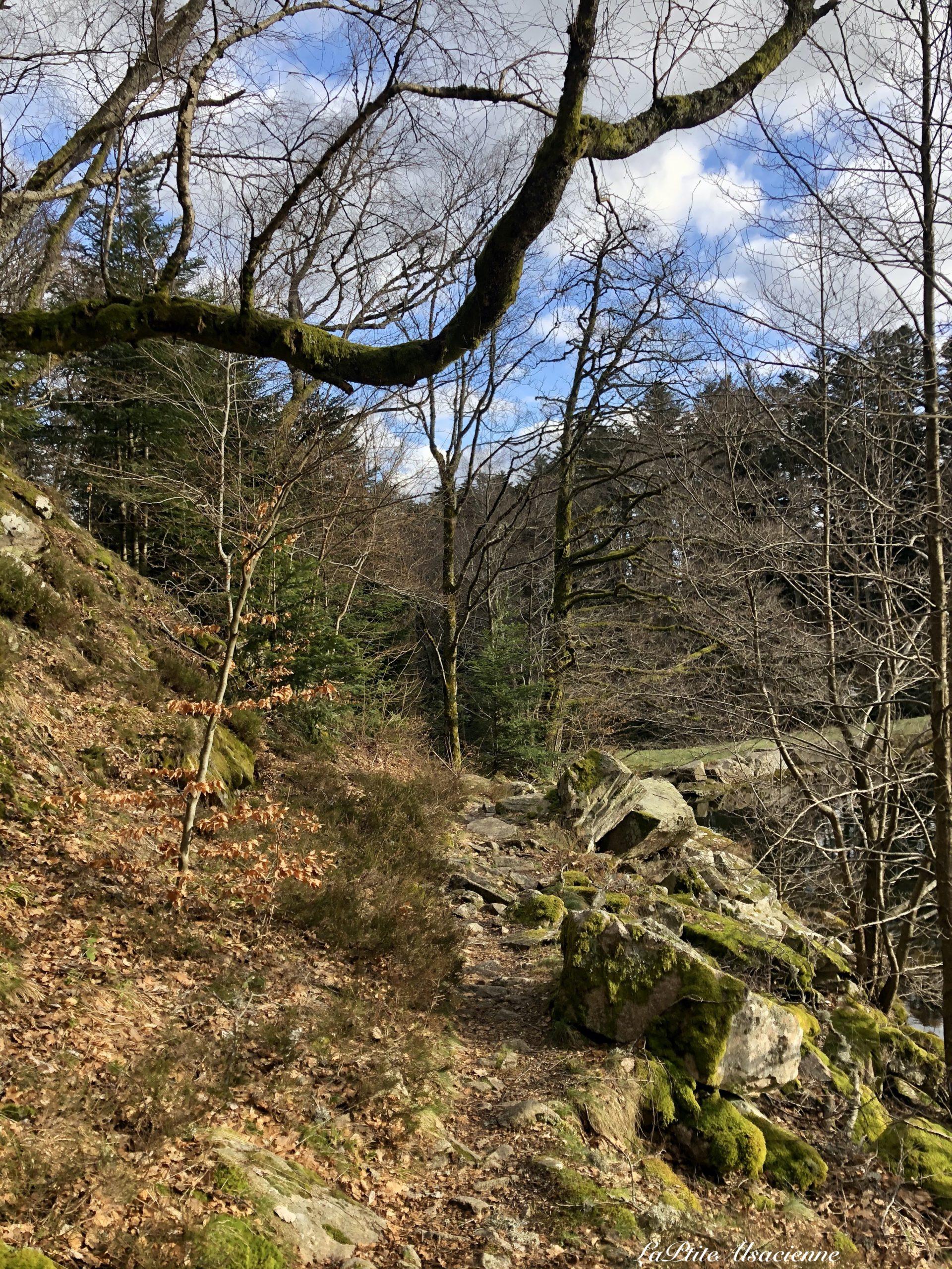 Descente par le sentier du Schiessroth vers le Lac du Schiessrothried - Photo by Cendrine Miesch dite LaPtiteAlsacienne