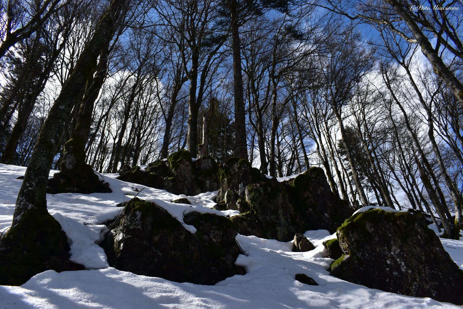 Sentier vers Rouge Gazon avec vu sur les rochers et paysage enneigé