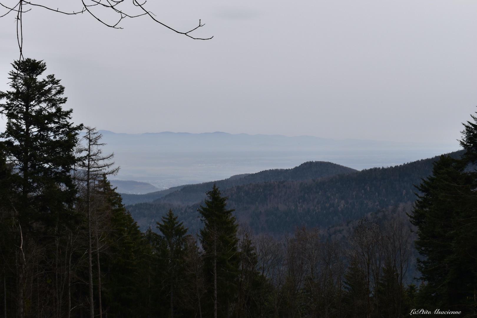 vue couverte sur plaine d alsace haut rhin