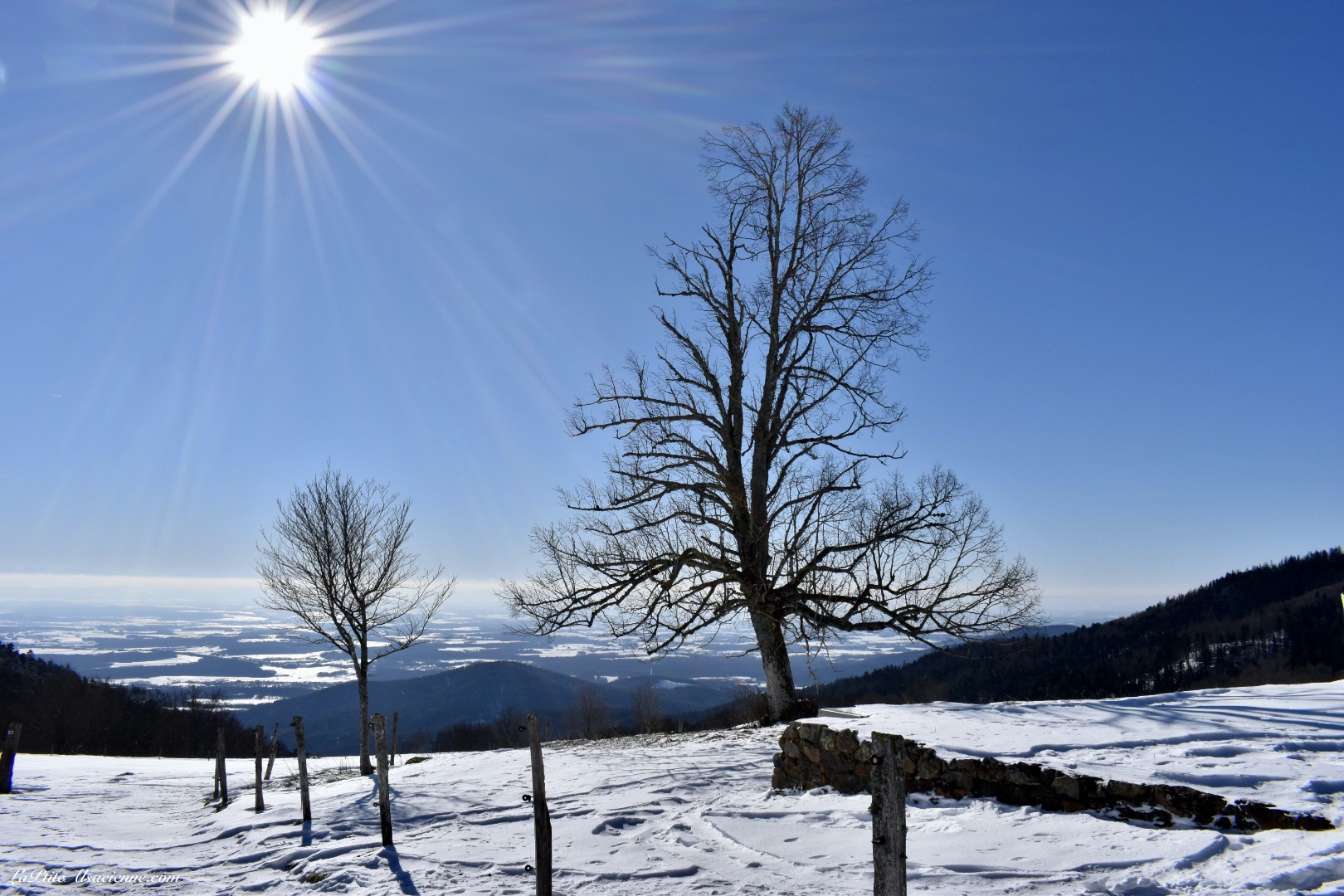 vue plaine alsace depuis refuge rossberg