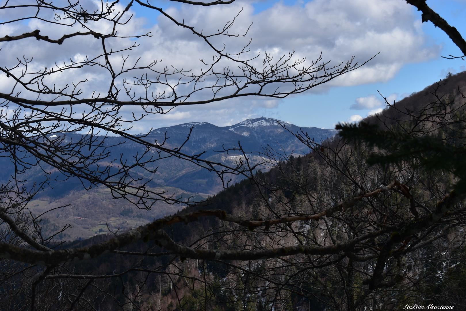 Vue sur le Grand Ballon depuis le sentier entre Col des Perches et Chaume de Rouge Gazon