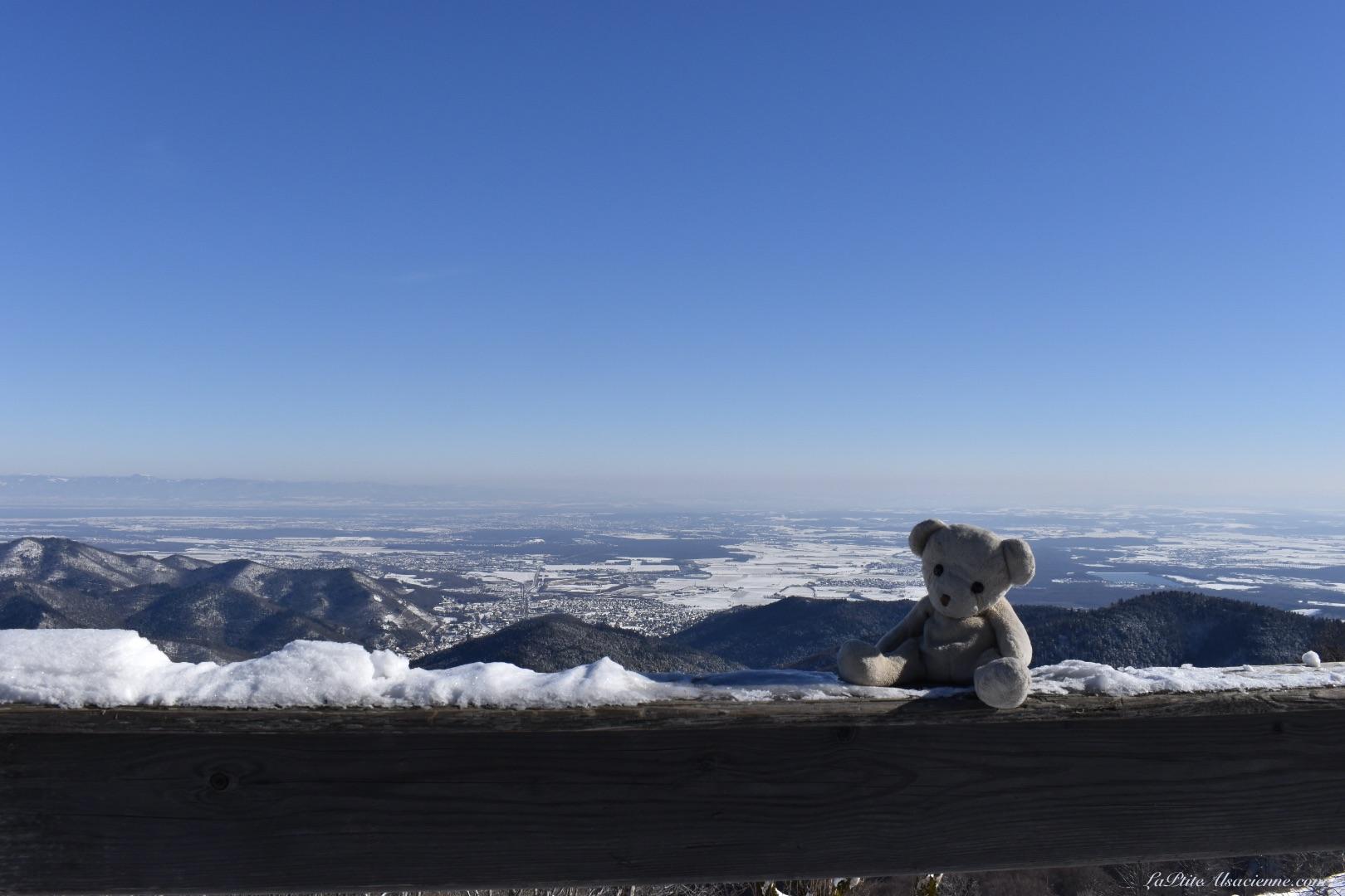 Doudou Sans Nom au Refuge du Thannerhubel, avec une vue sur la Plaine d'Alsace