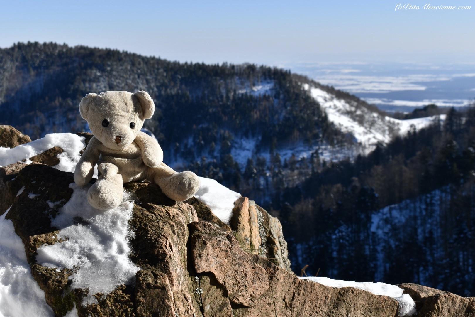 Doudou Sans Nom en randonnée vers le Thannerhubel depuis le Col du Hundsruck