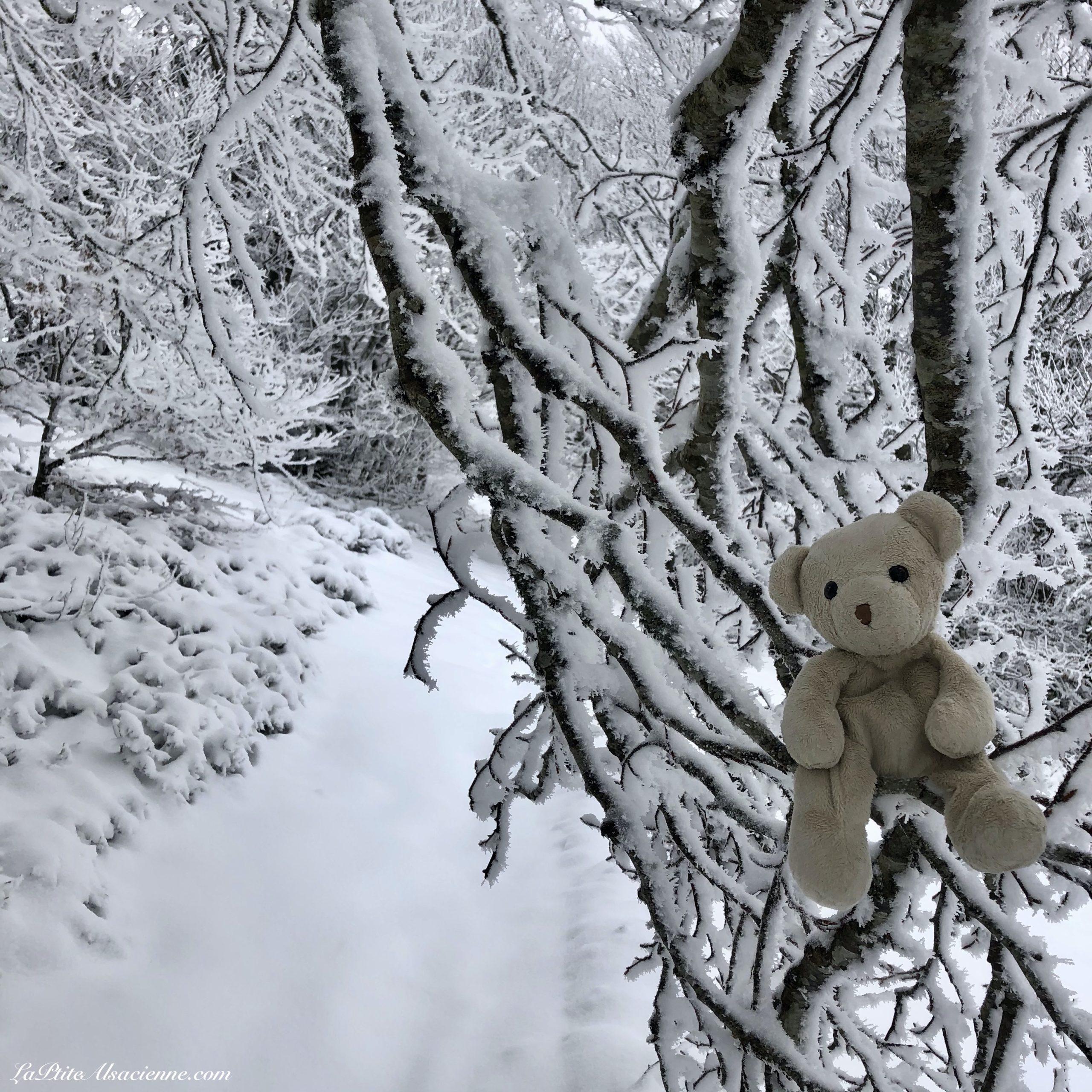 Doudou Sans Nom part en vacances d'hiver à la montagne