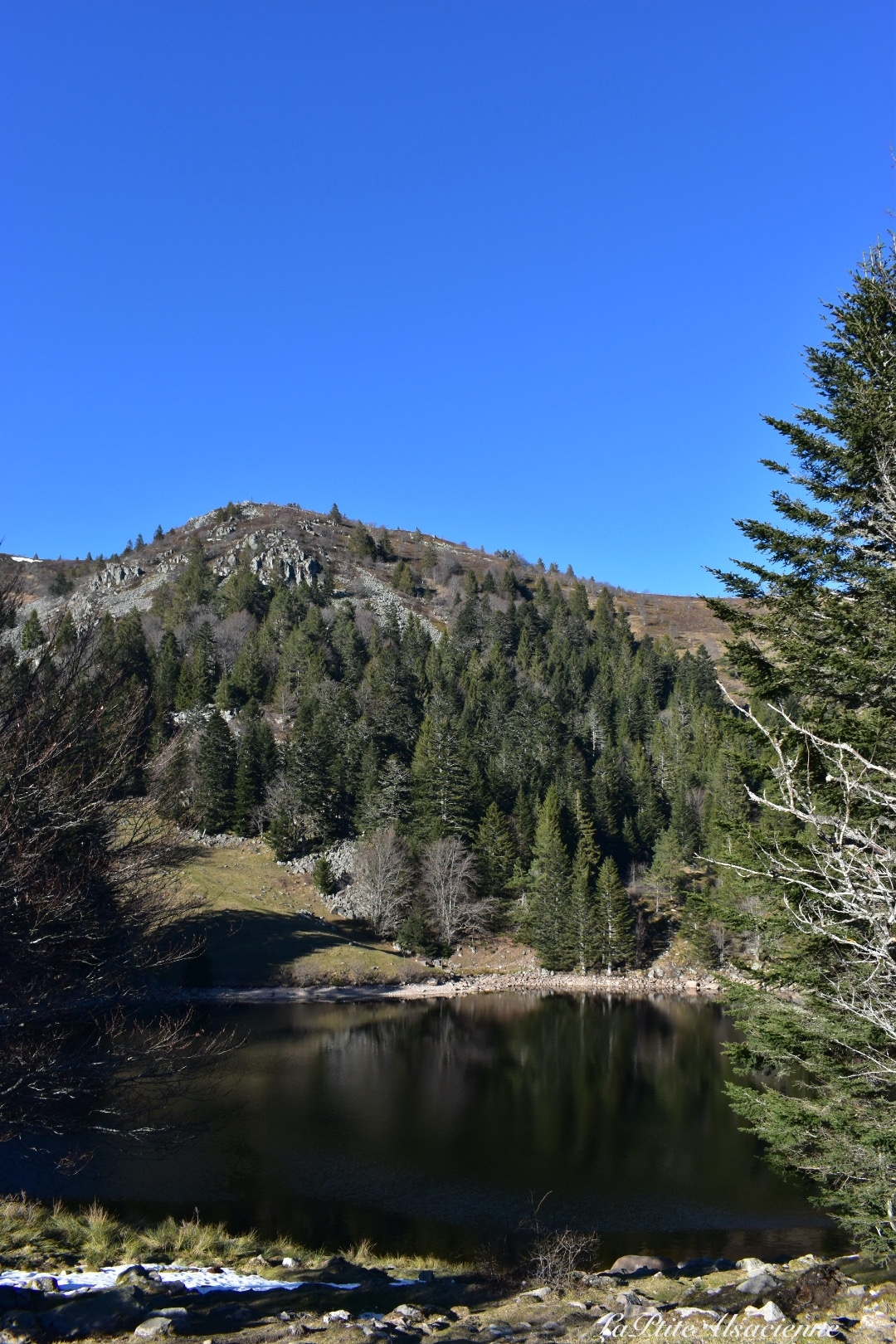 Lac Forlet - Février 2021