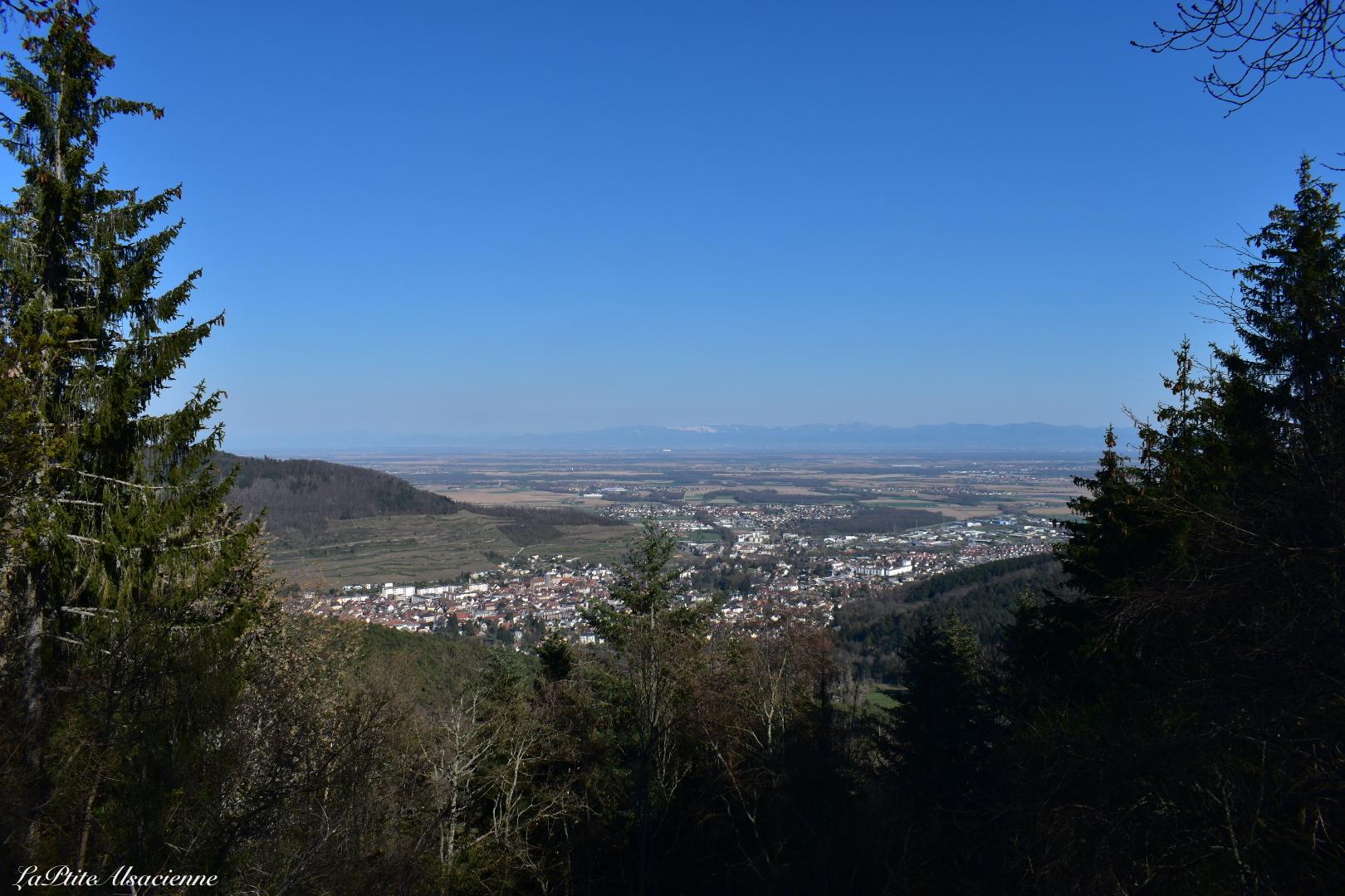 Vue depuis le Rehbrunnenkopf sur Guebwiller et la plaine d'Alsace