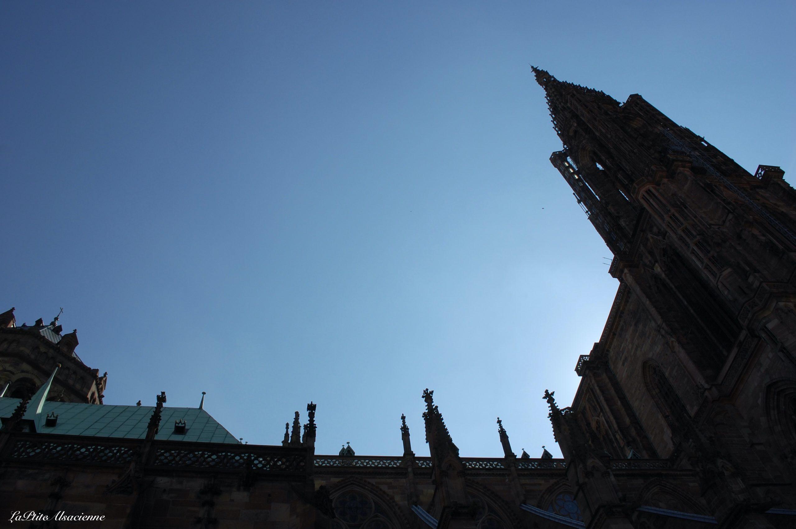Cathédrale de Strasbourg - Photo de Cendrine Miesch