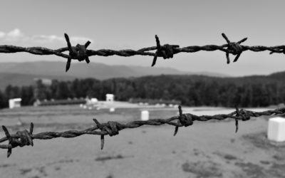 Retour en arrière : l'histoire du Struthof