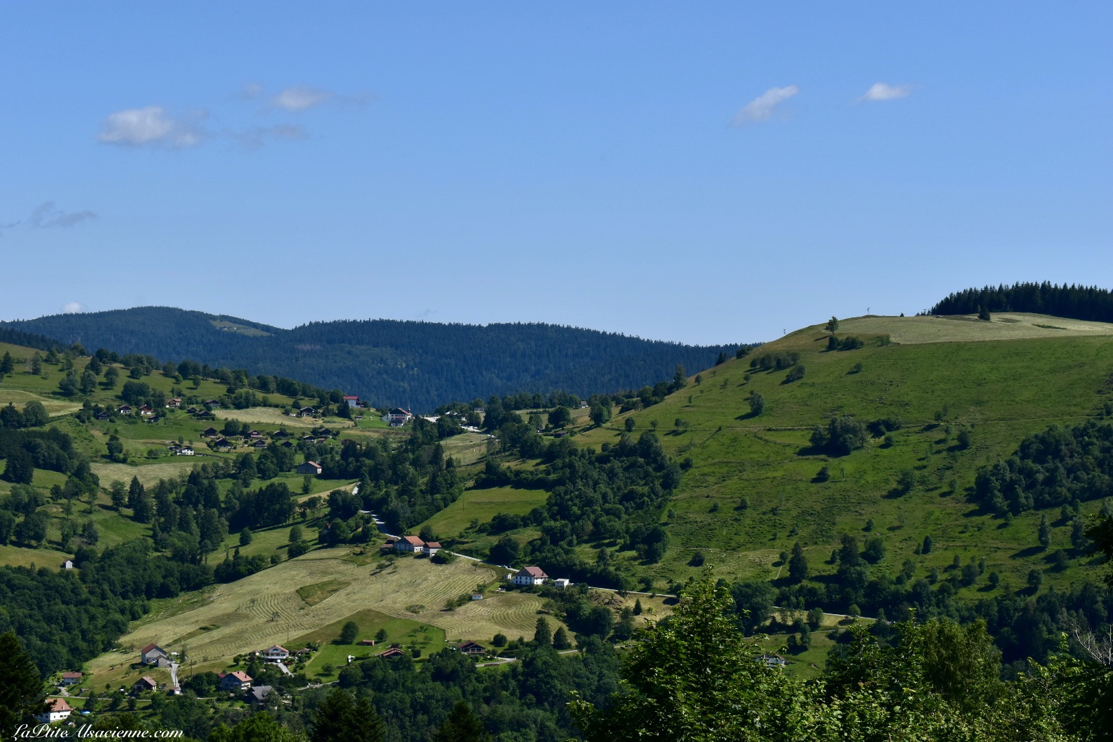 Vue sur les Vosges depuis la Montagne des Lamas à La Bresse - Photo de Cendrine Miesch dite LaPtiteAlsacienne
