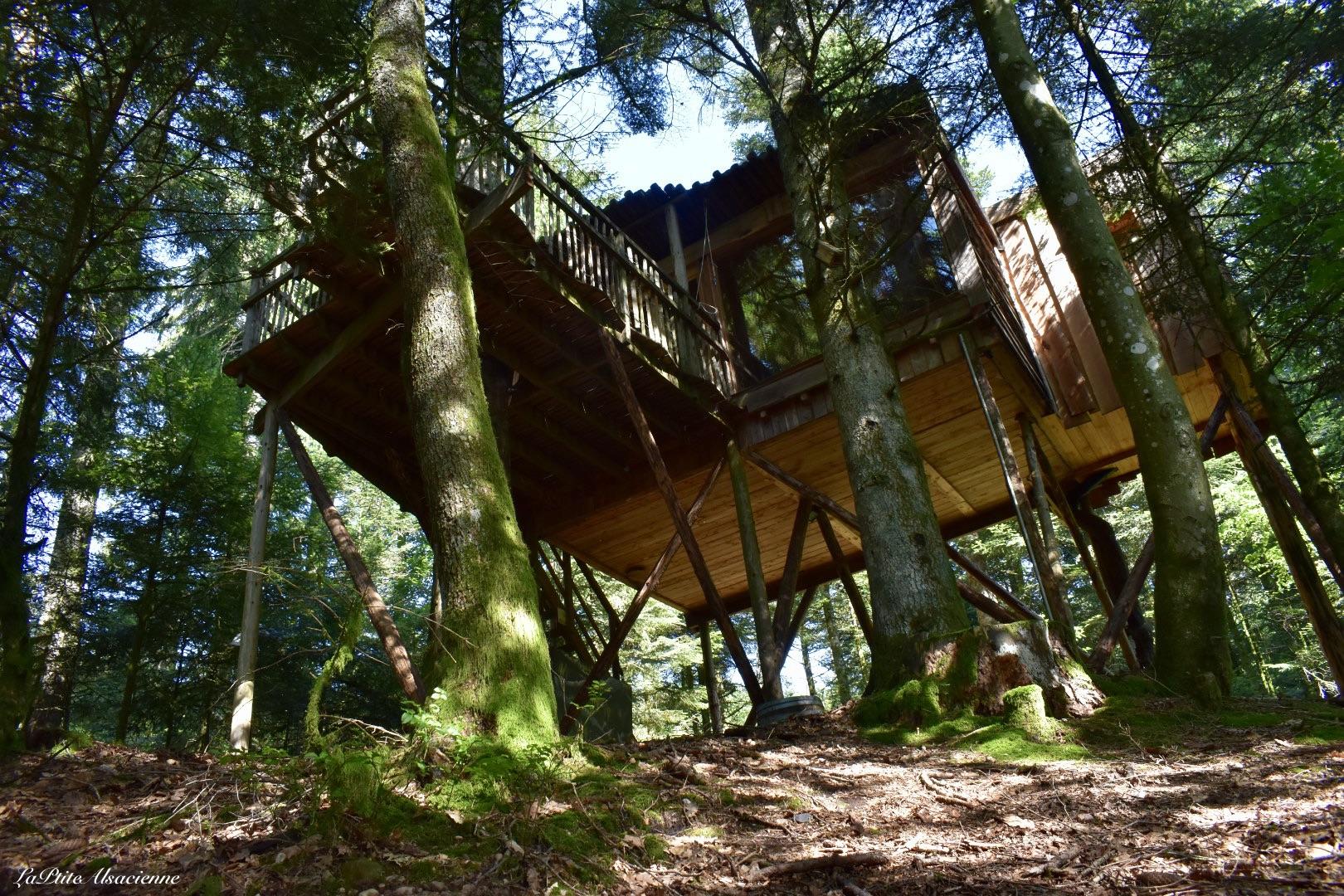 Cabane dans les arbres n°7 Vision - Nids des Vosges - Photo de Cendrine Miesch dite  LaPtiteAlsacienne