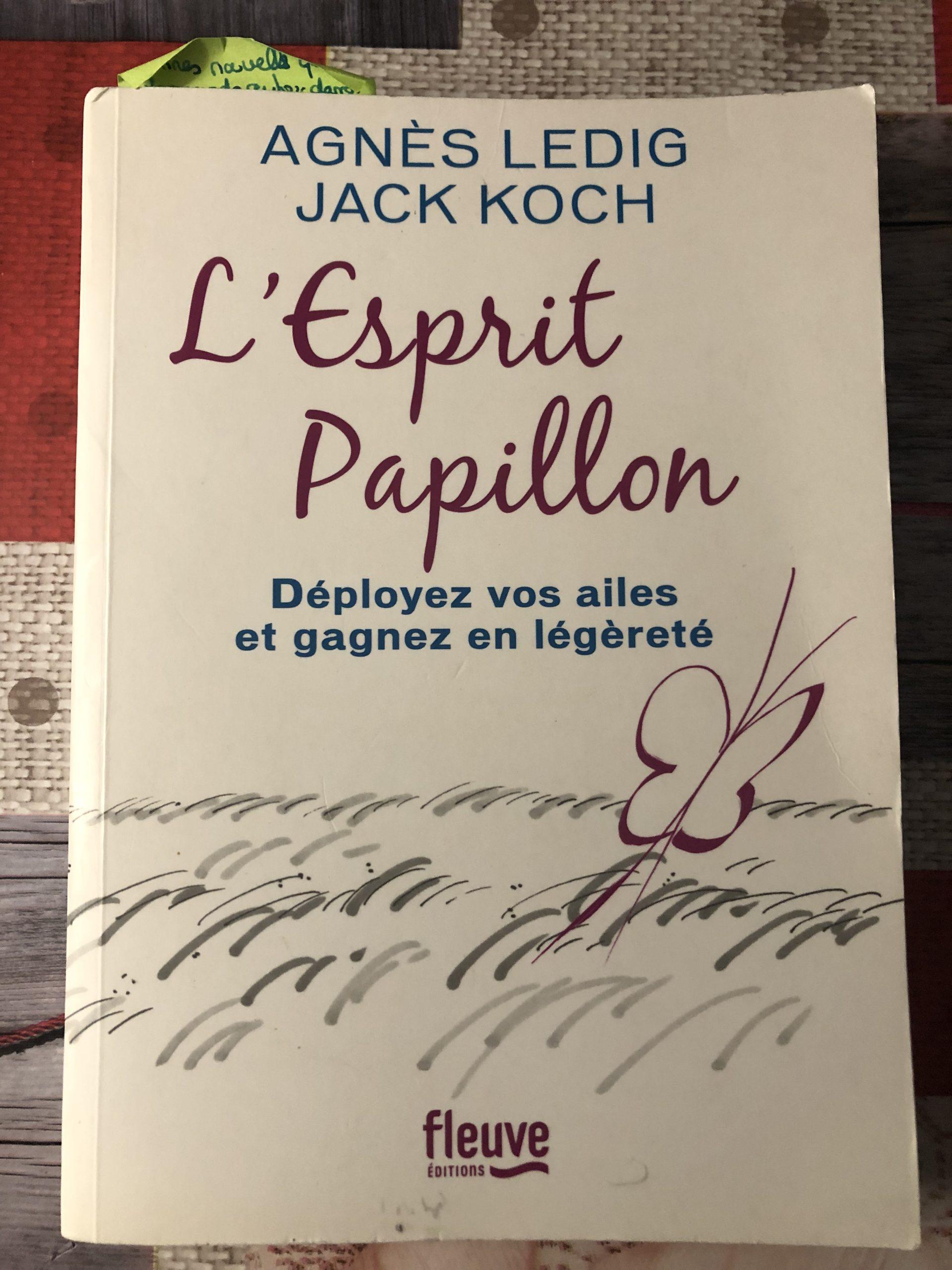 L'esprit Papillon d'Agnès Ledig et Jack Koch. Photo de Cendrine Miesch sur le blog de LaPtiteAlsacienne.com
