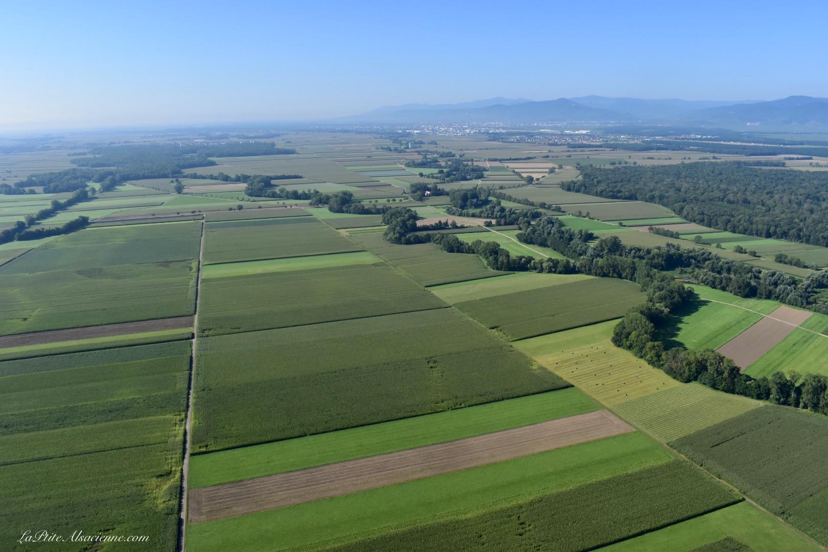 La Plaine d'Alsace et ses champs. Photo prise en ULM - Septembre 2021, par Cendrine Miesch dite LaPtiteAlsacienne